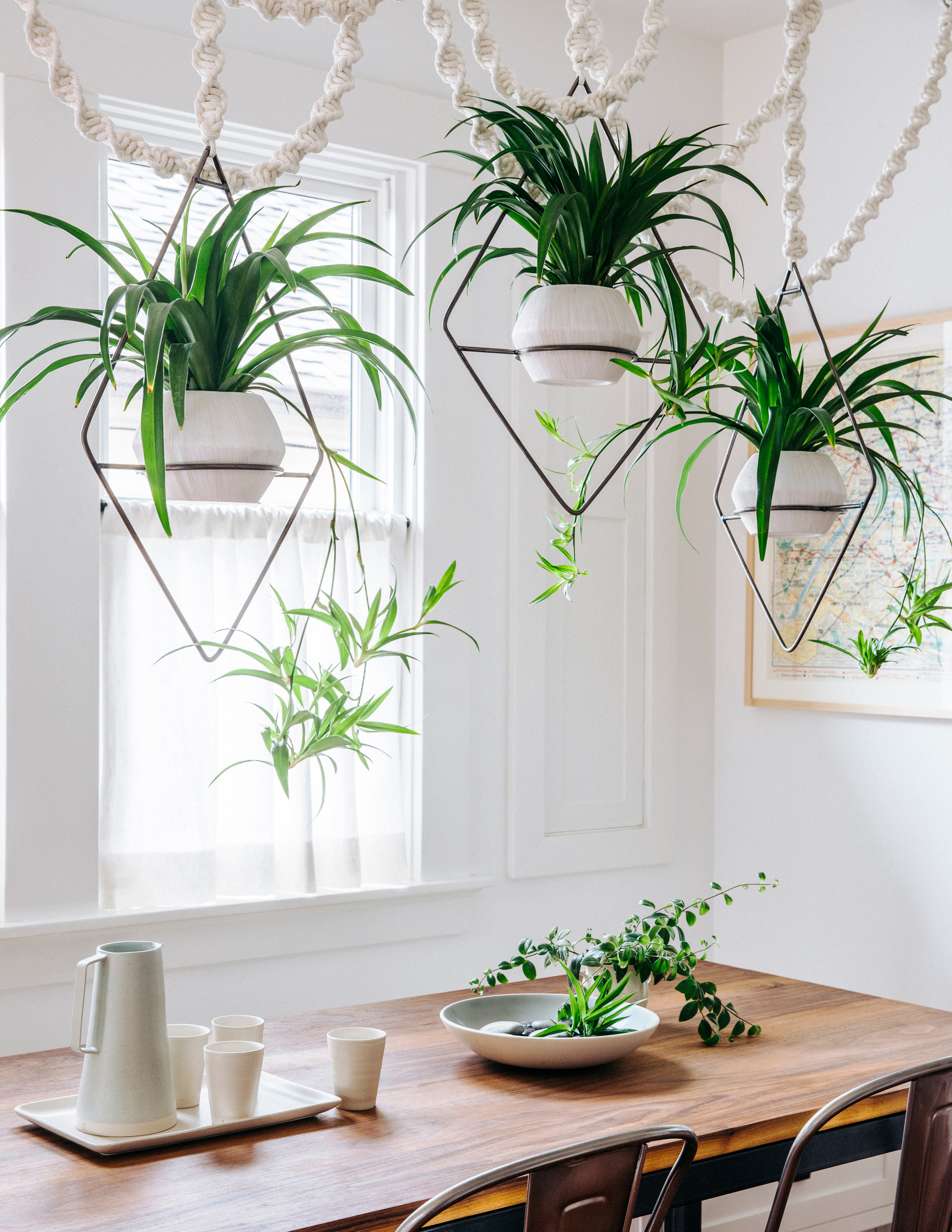 19 ways to design with houseplants sunset magazine for Ways to hang plants inside