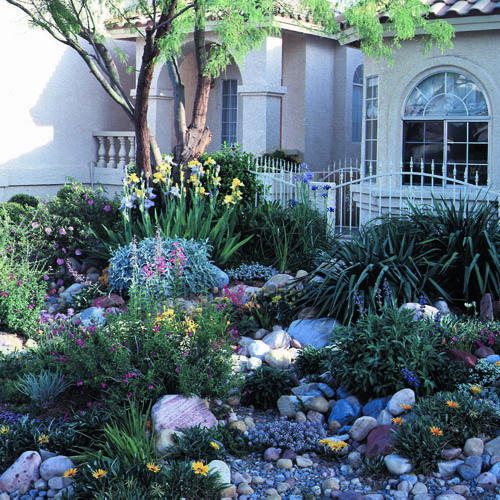 Water-wise Landscaping On A Small Las Vegas Lot