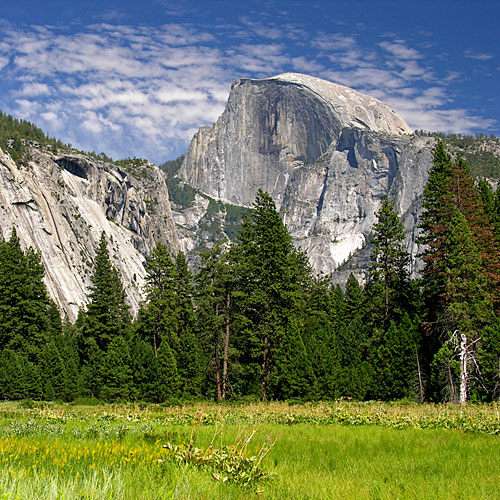 Take in the view of Half Dome from Cook's Meadow