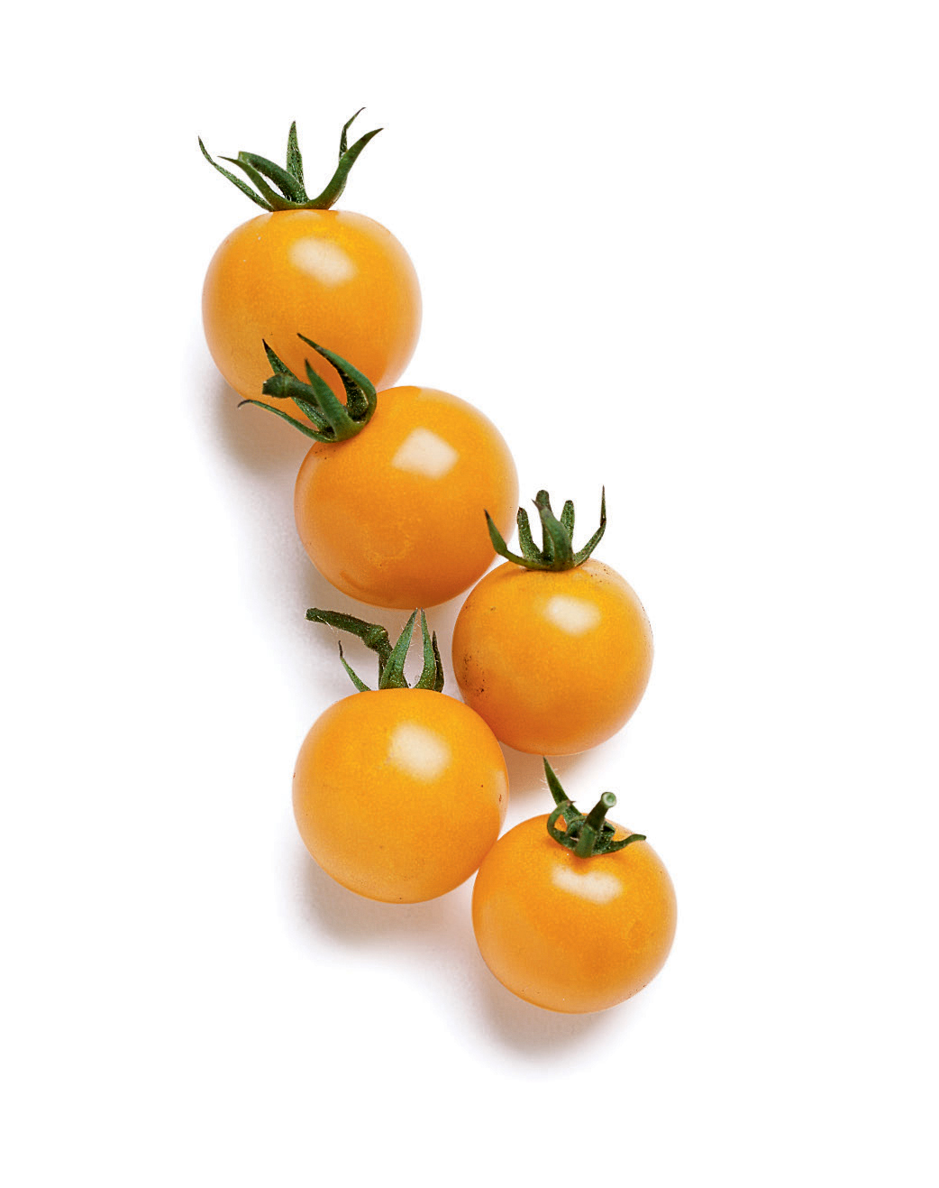 5 Best Cherry Tomatoes