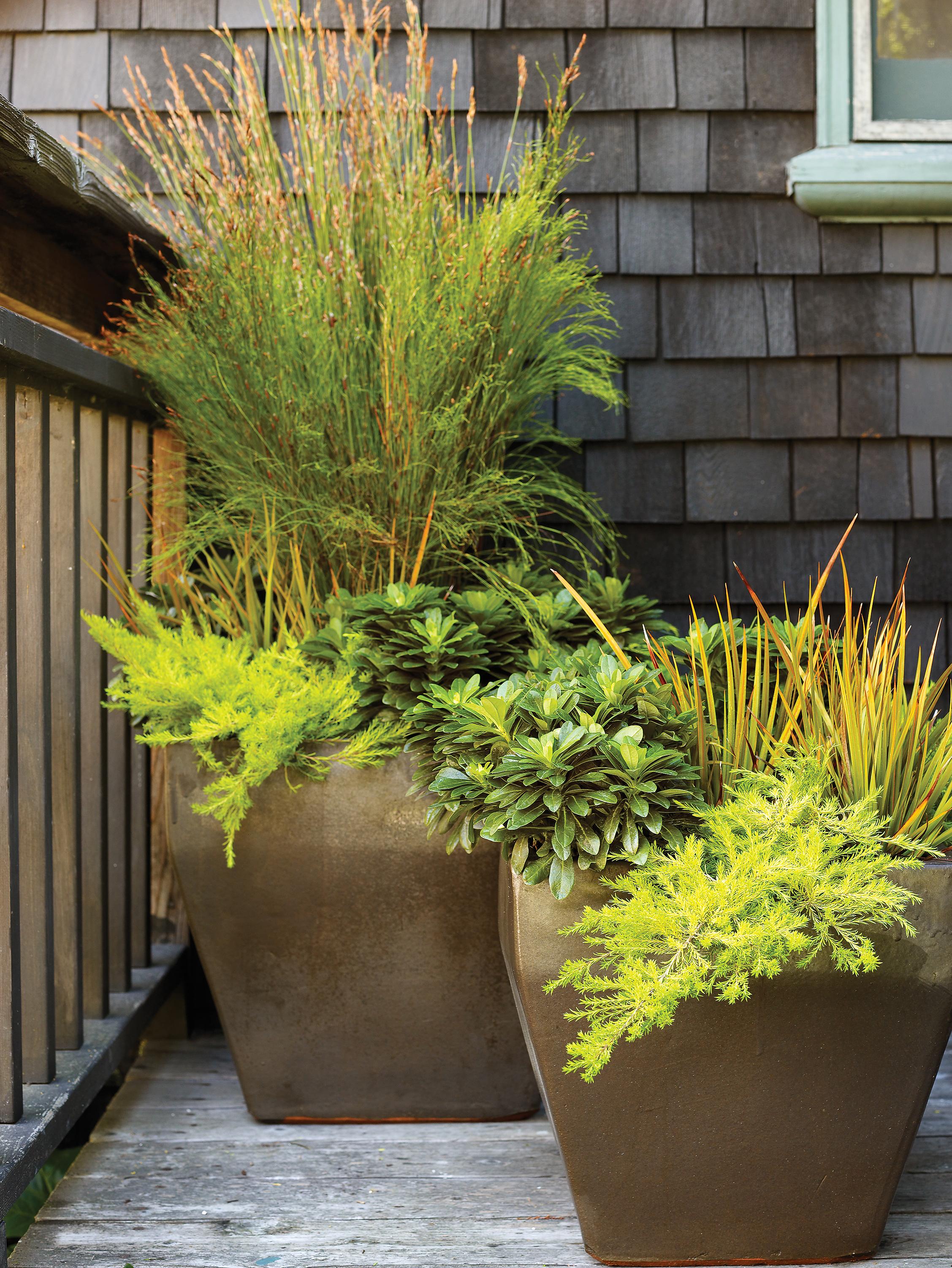 5 Fall Planter Ideas Sunset Magazine