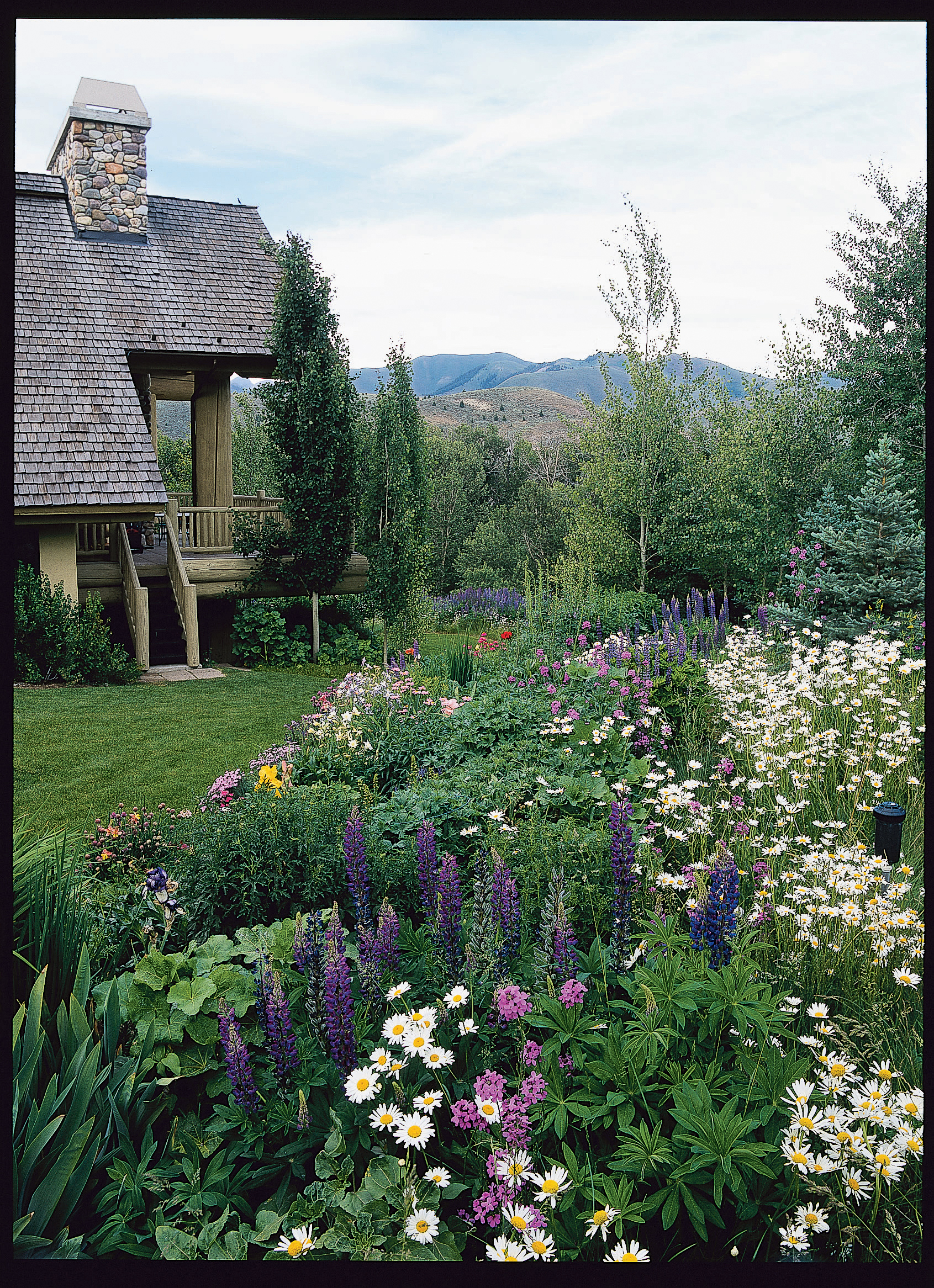 20 Garden Border Designs