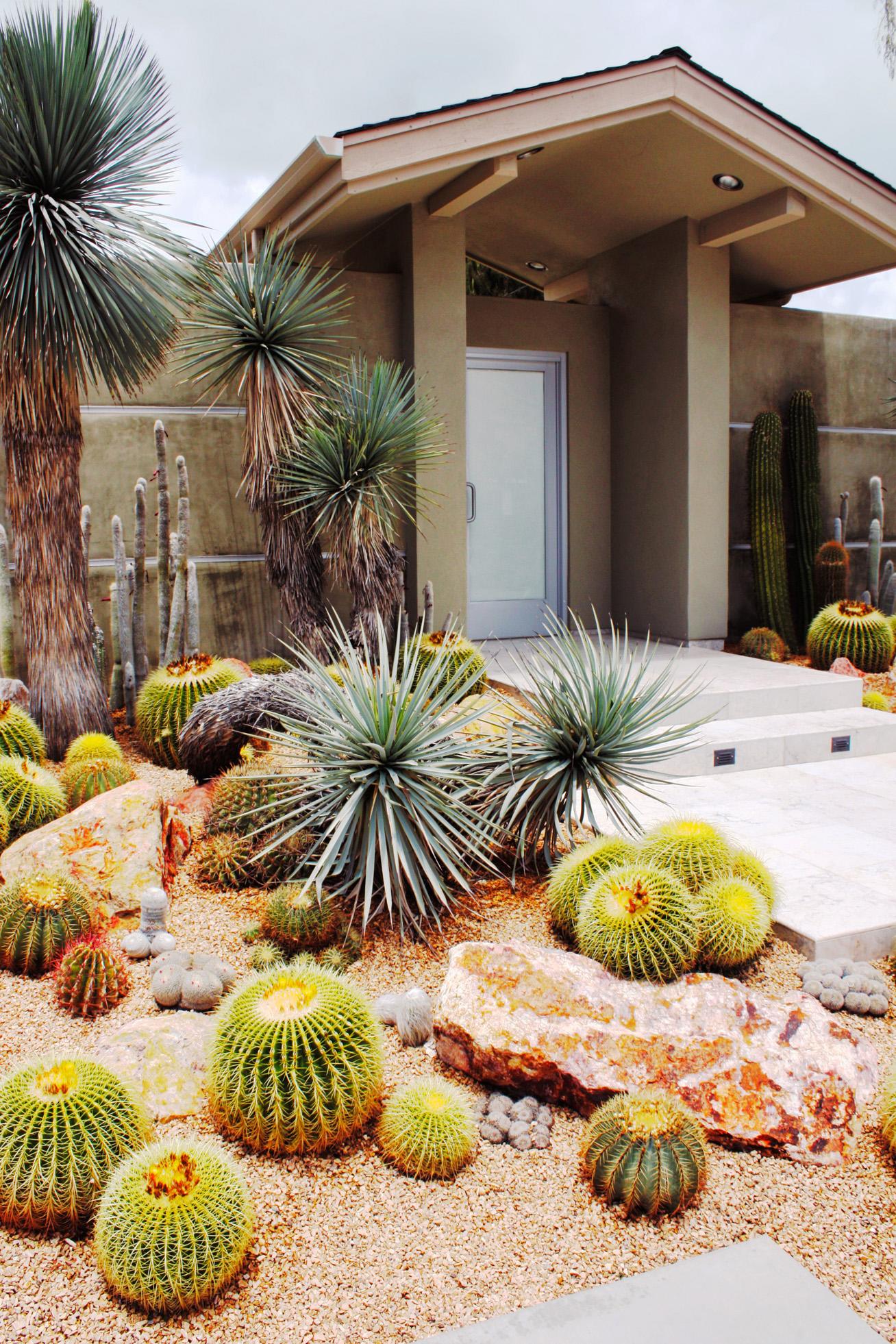 Water-Wise Garden Design Guide - Sunset Magazine