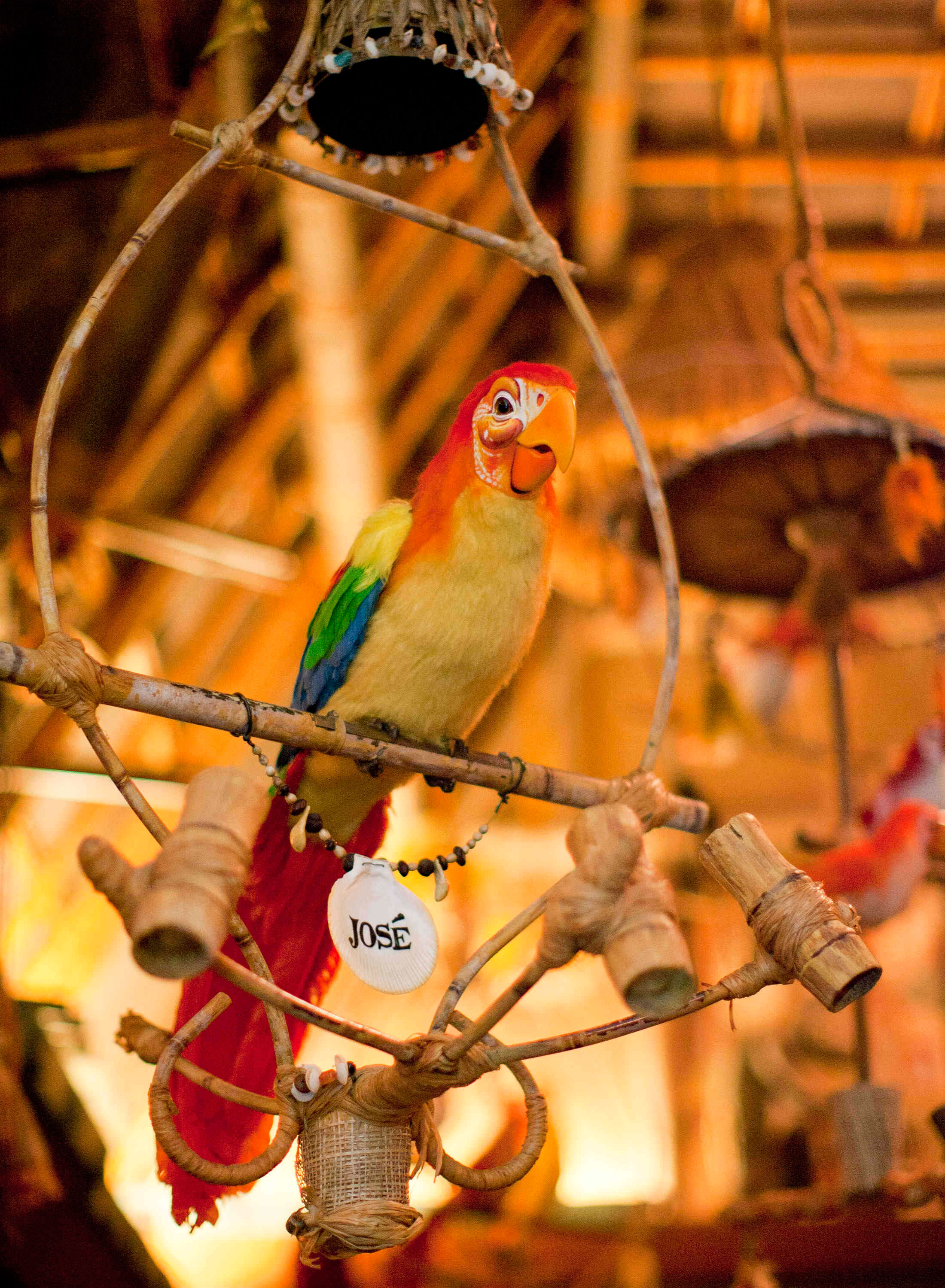 Which Is Better The New Or Old Enchanted Tiki Room