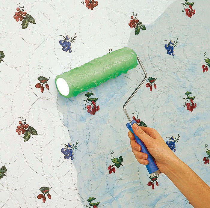 How to apply wallpaper stripper