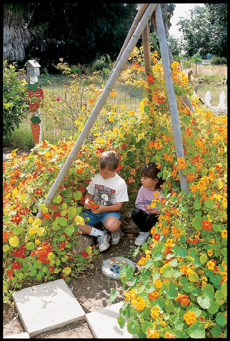 Garden Entrance Trellis
