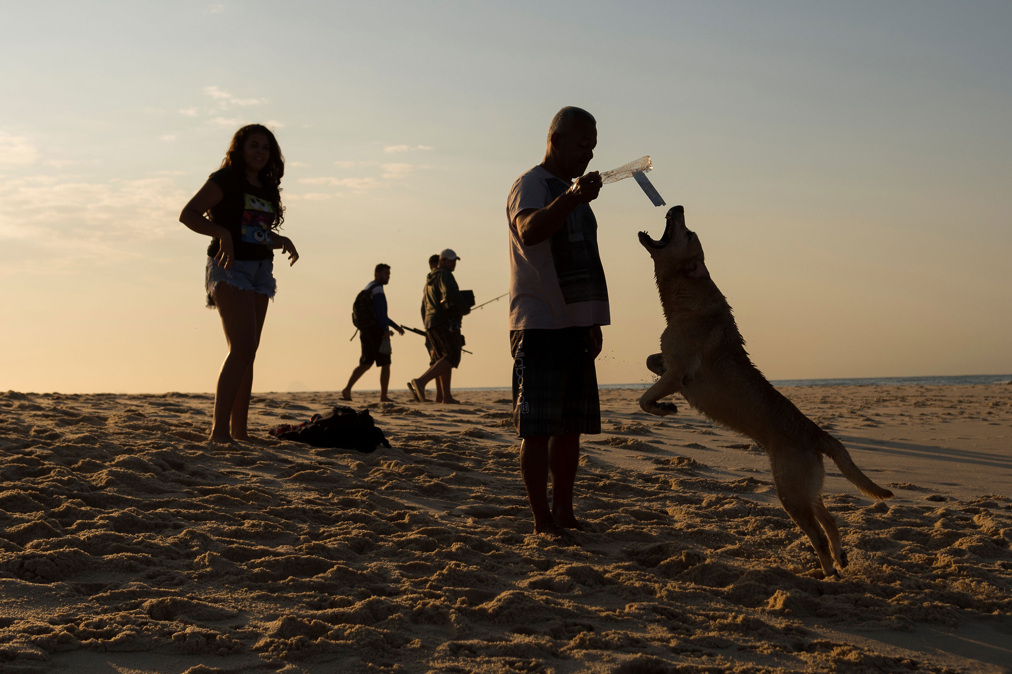 12 Ways to Have the Best-Ever Beach Day with Your Dog