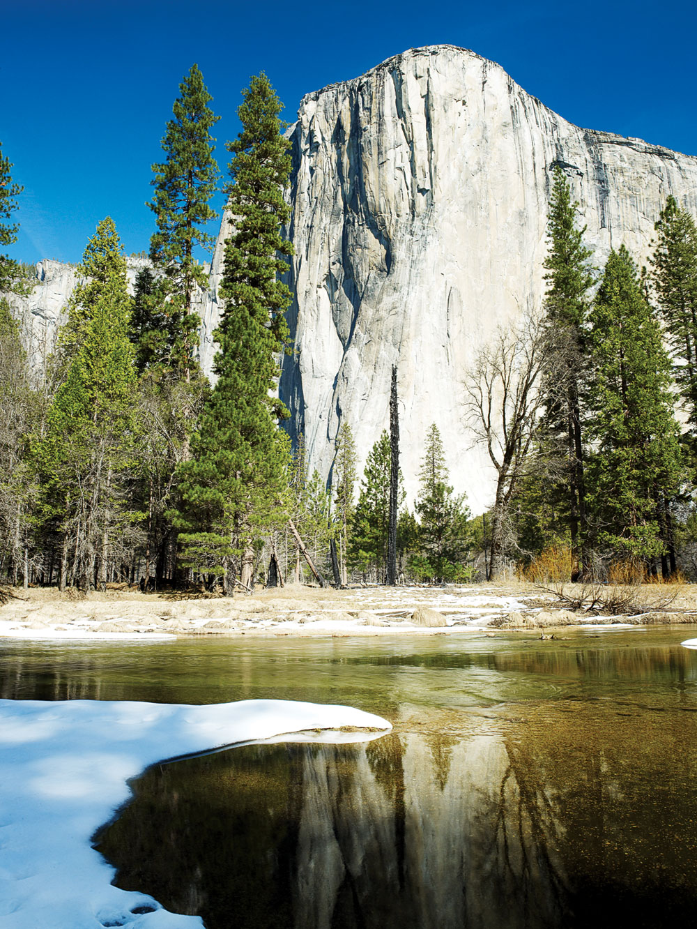 5 Things to Do in Yosemite with a Toddler