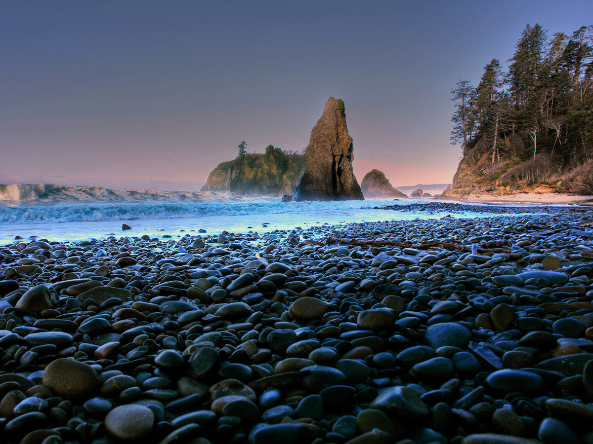 Olympic National Park 101