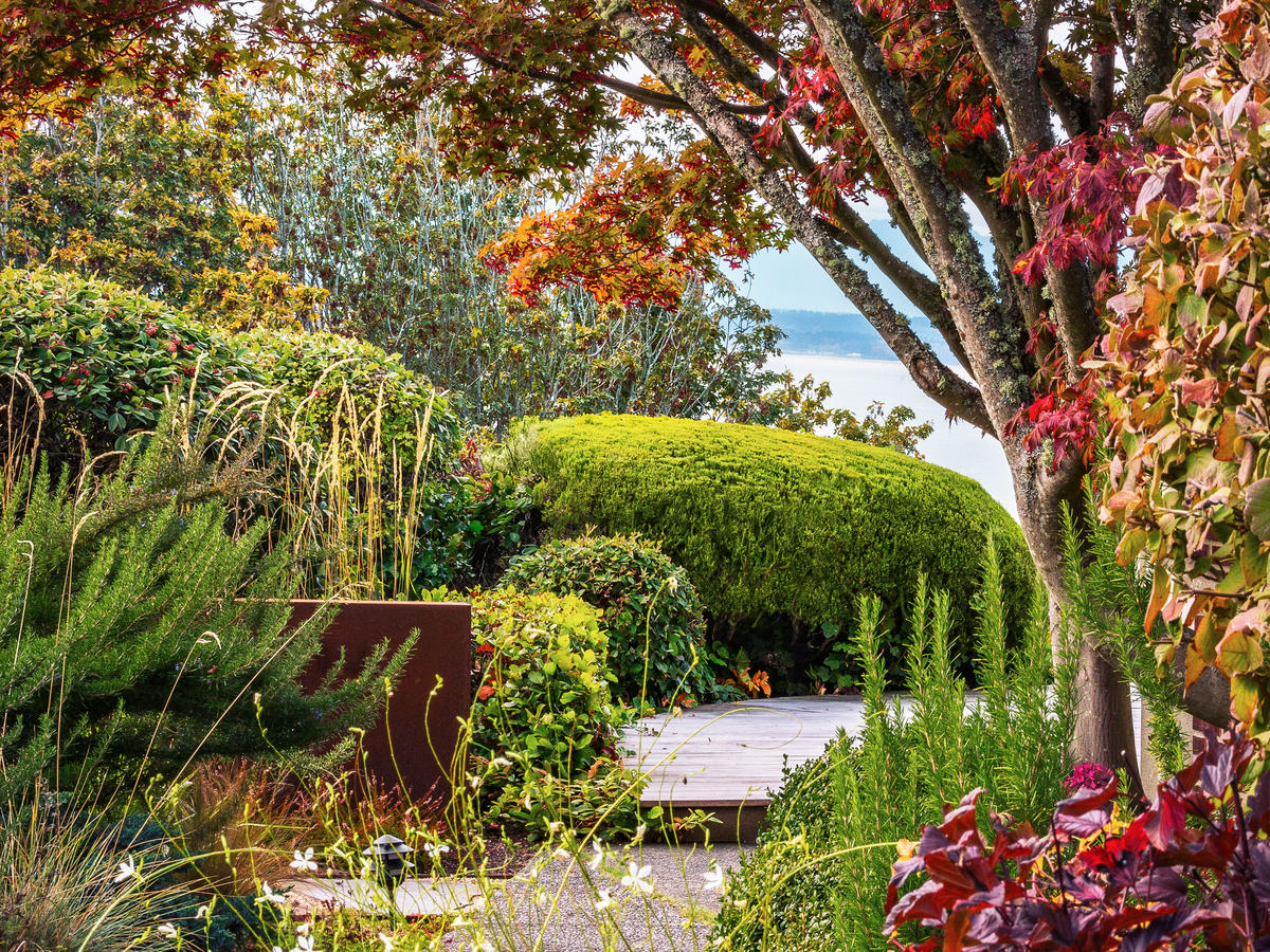 3 Ways to Maximize Fall Color in Your Garden