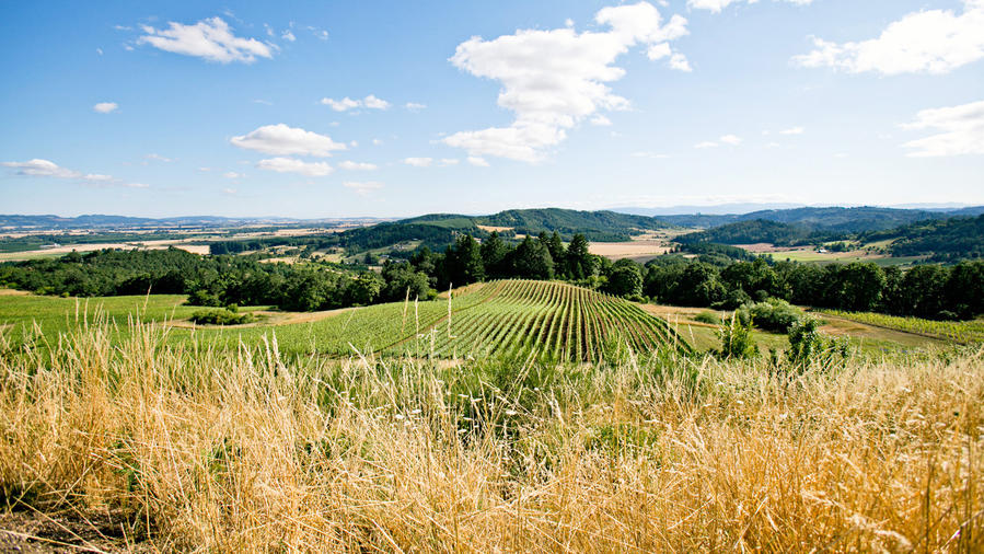 4 more wine country dream towns