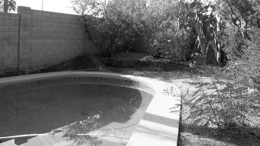 Small Garden Before: Phoenix 1,600 Sq. Ft. Sun-Drenched Paved Space