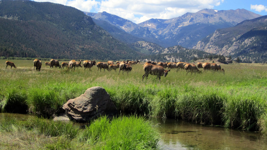 Top Wow Spots of Rocky Mountain National Park