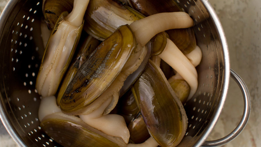 How to Clean Razor Clams