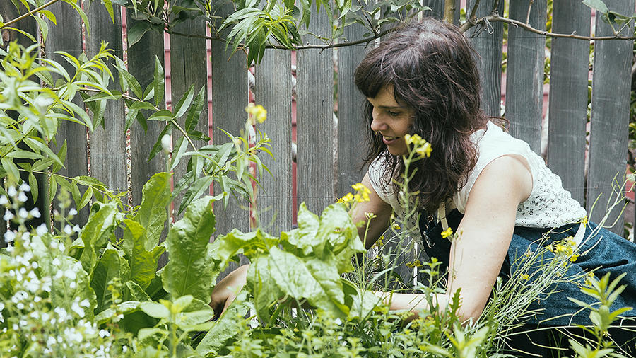 5 ways to maintain a veggie garden in dry times