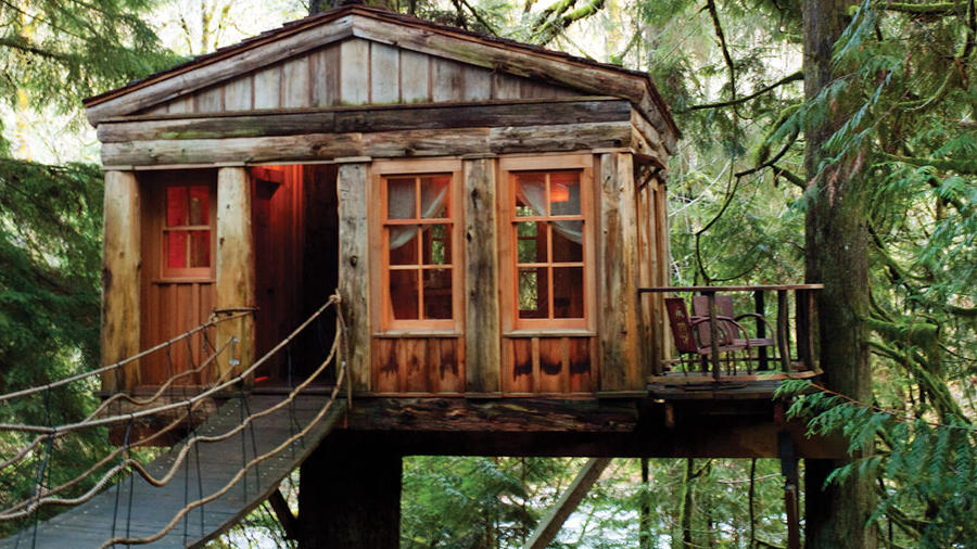 This Tiny Cabin In The Redwoods Is The Perfect Getaway For: 4 Cozy Treehouse Getaways