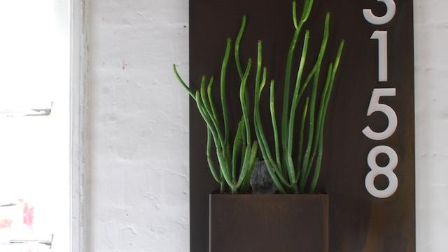 Planter, Planter, on the Wall