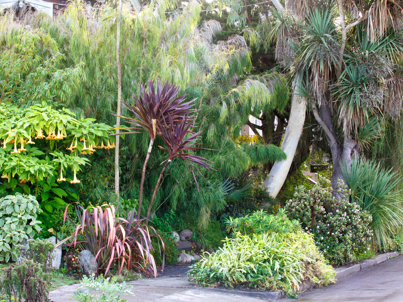9 Best Hellstrip Gardens