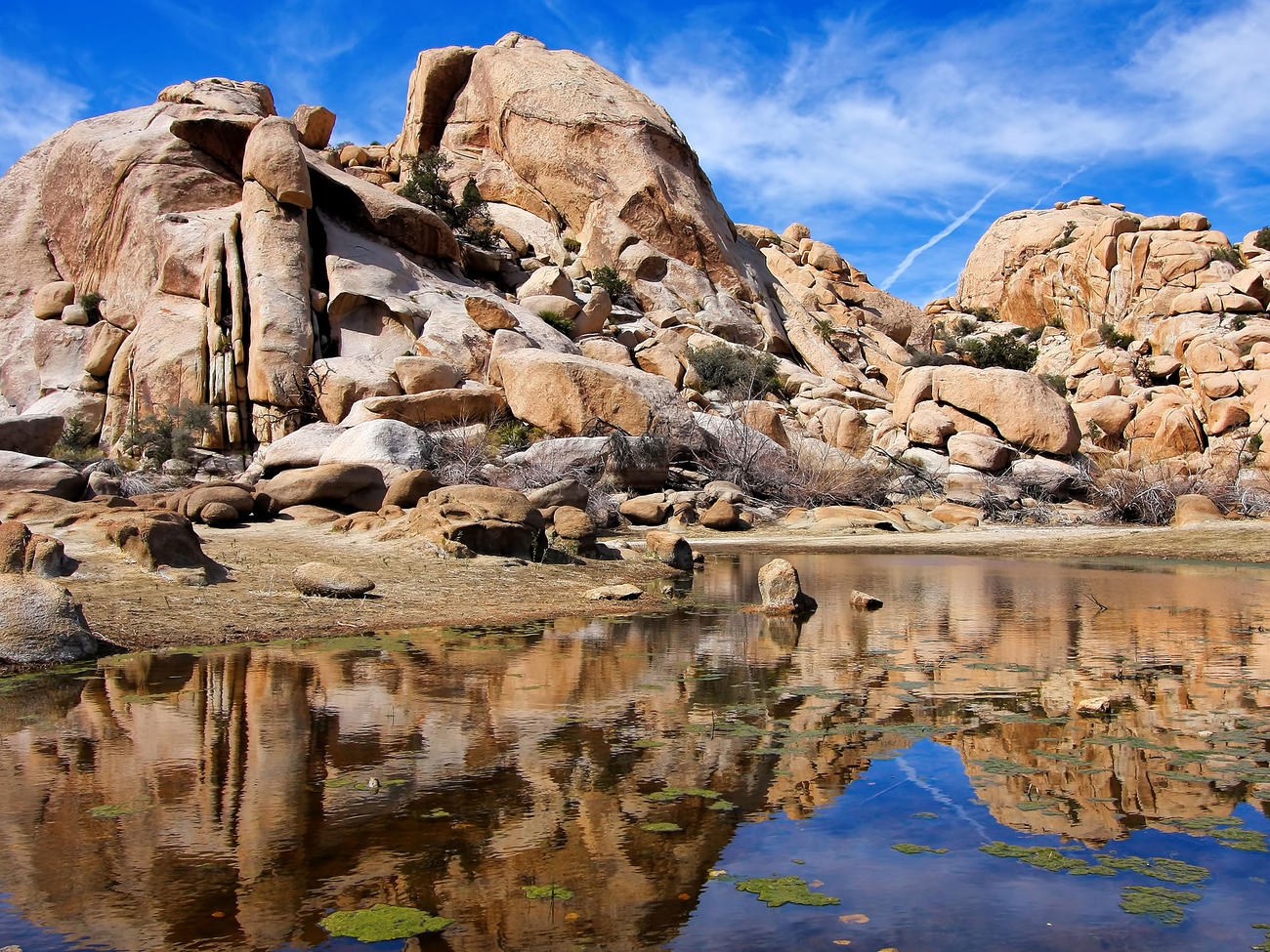 Joshua Tree N.P. Itineraries