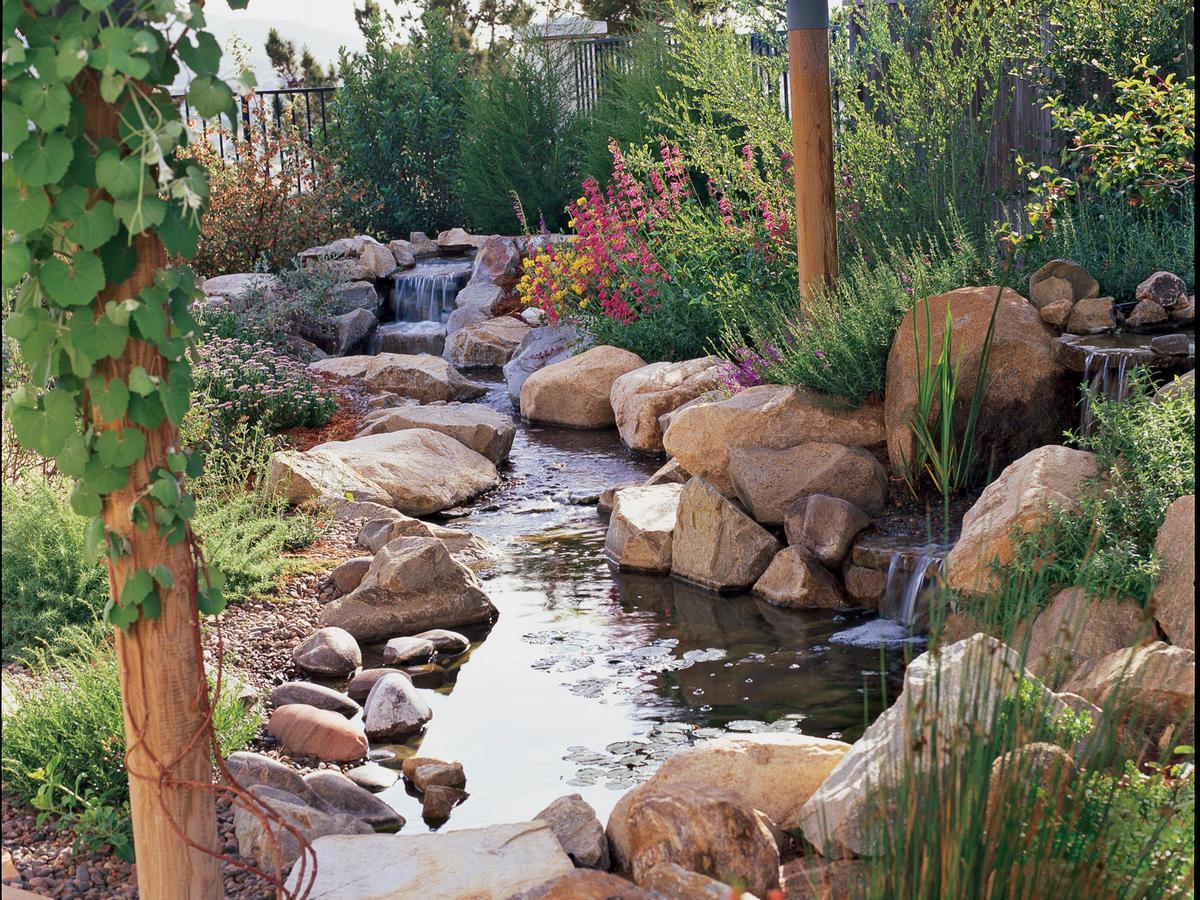 backyard natural grow