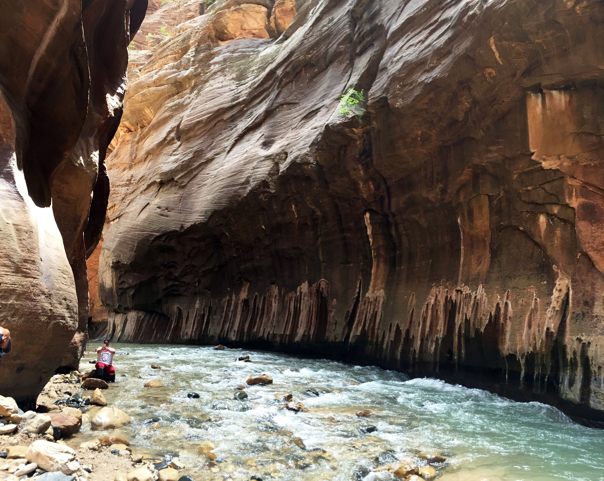 How to Prepare for a Hiking Trip to Zion's Narrows