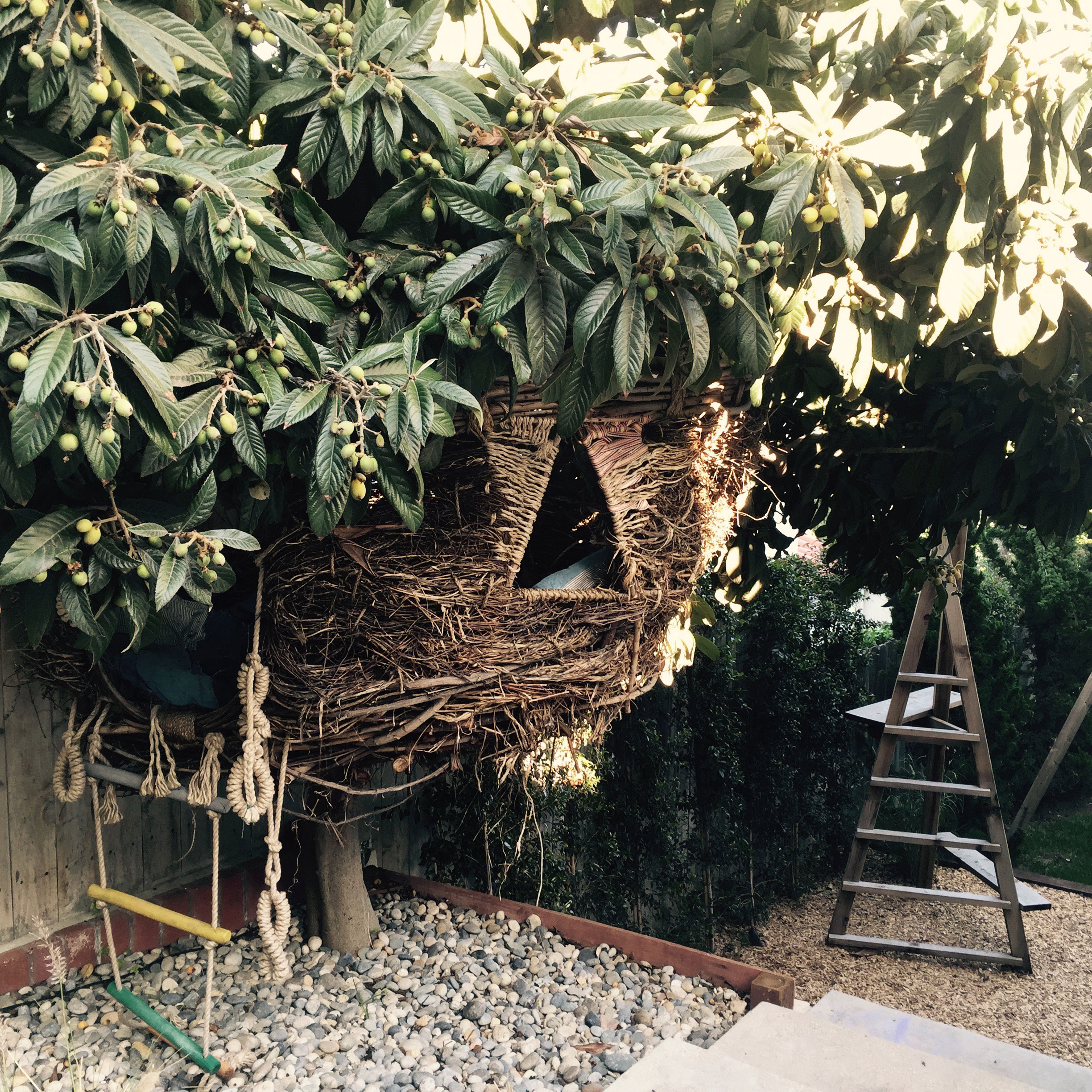 Backyard Willow Nest