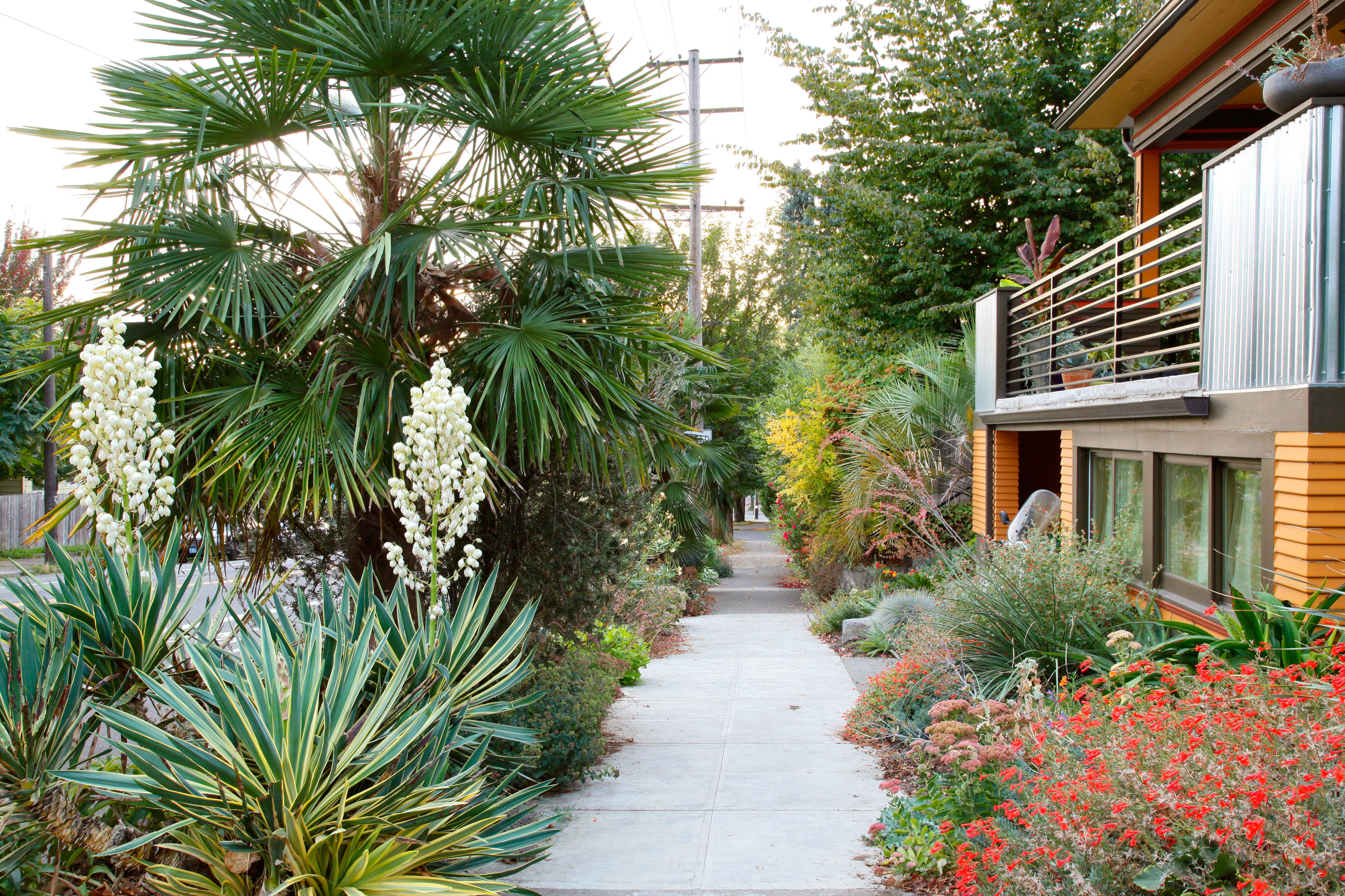 9 Best Hellstrip Gardens Sunset Magazine