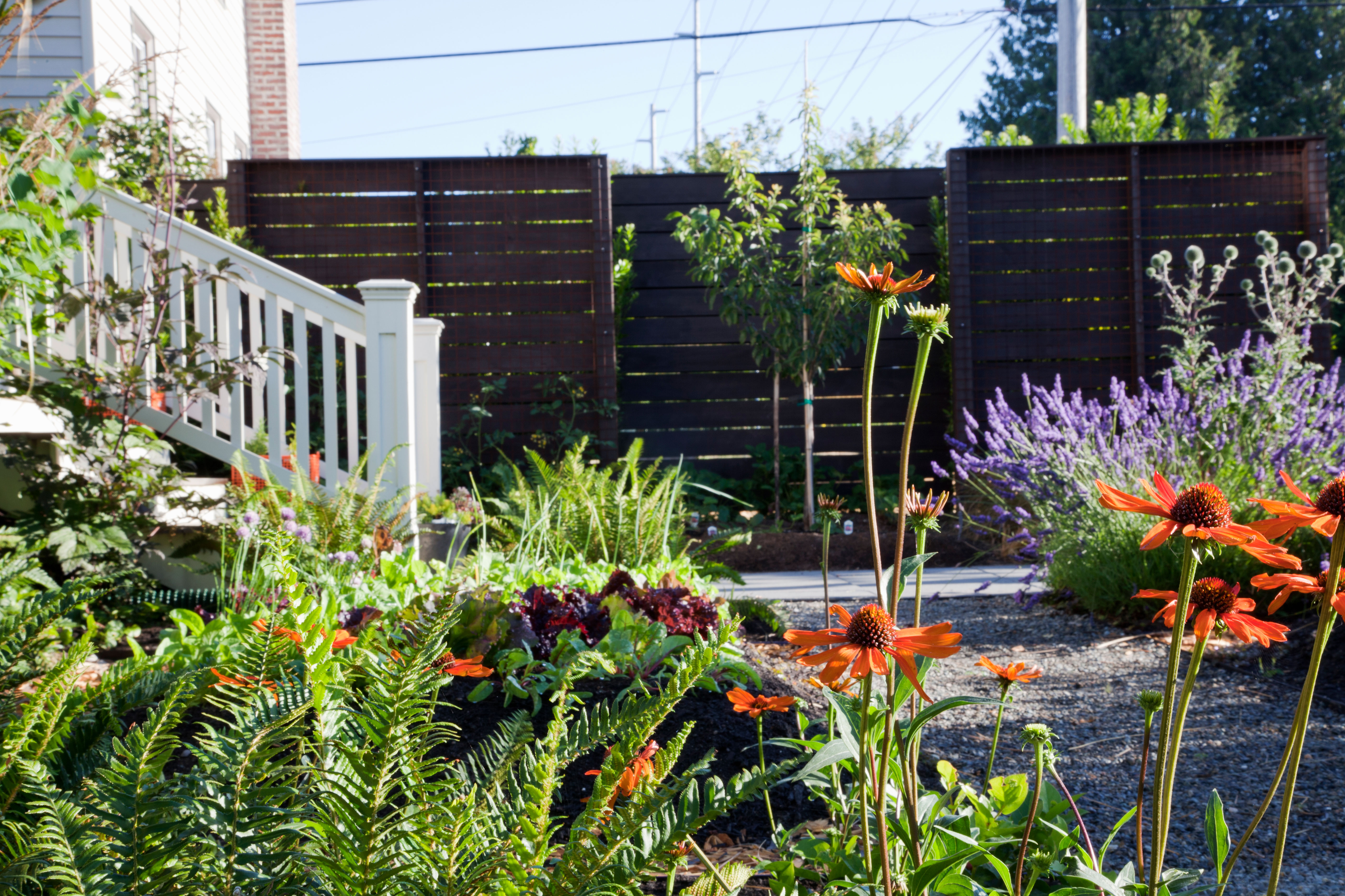 front yard garden. Colorful bounty  Ivette Soler s The Edible Front Yard 10 Outstanding Gardens Sunset Magazine
