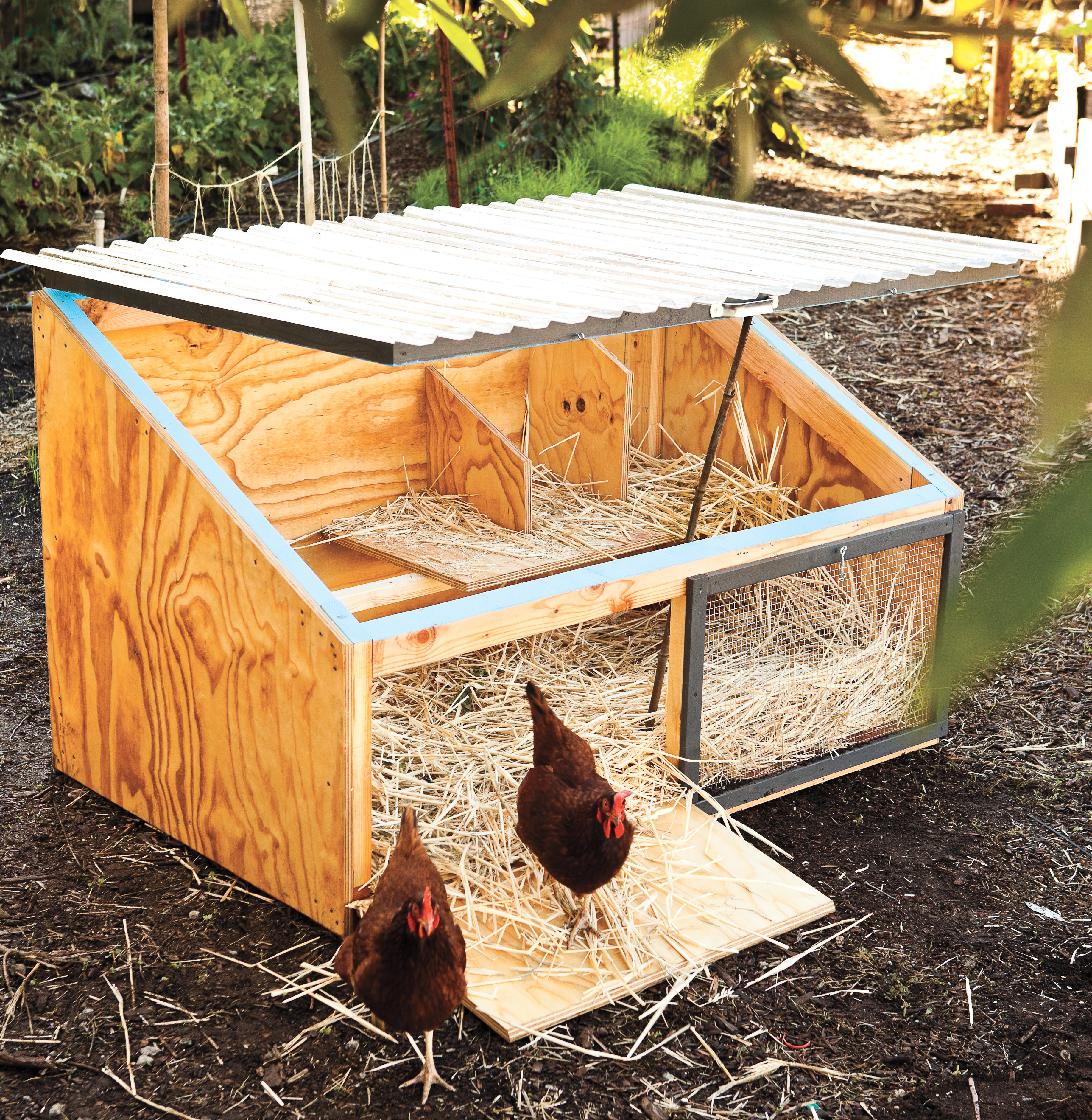 How To Build A Chicken Coop Including Free Plans Sunset Magazine