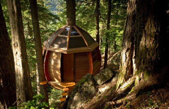 A (Not so) Top-Secret Canadian Treehouse
