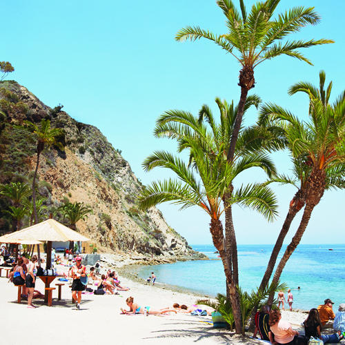 Catalina Island Beach: Catalina Getaway