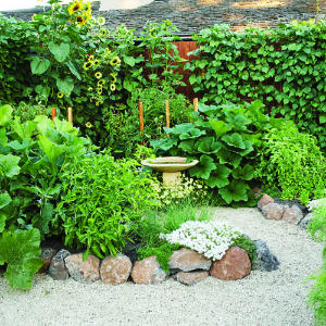 Ideas for your garden layout