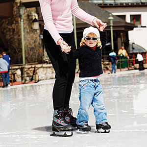 Black Family Ice Rink