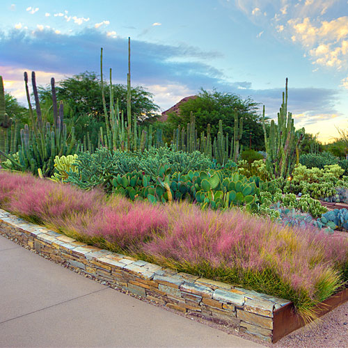 Ordinaire Desert Botanical Garden · Pinterest. Adam Rodriguez. Click To Enlarge.  Phoenix ...