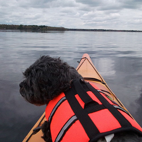 Kayak co-pilot
