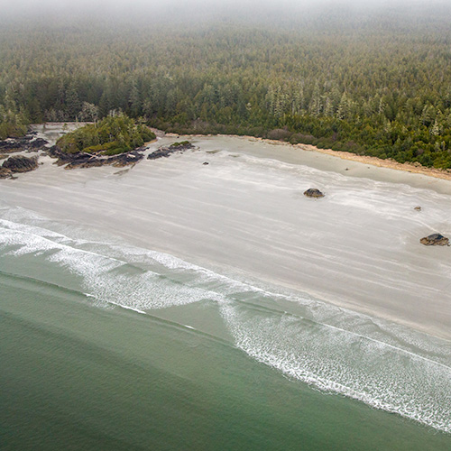 Beaches of Tofino