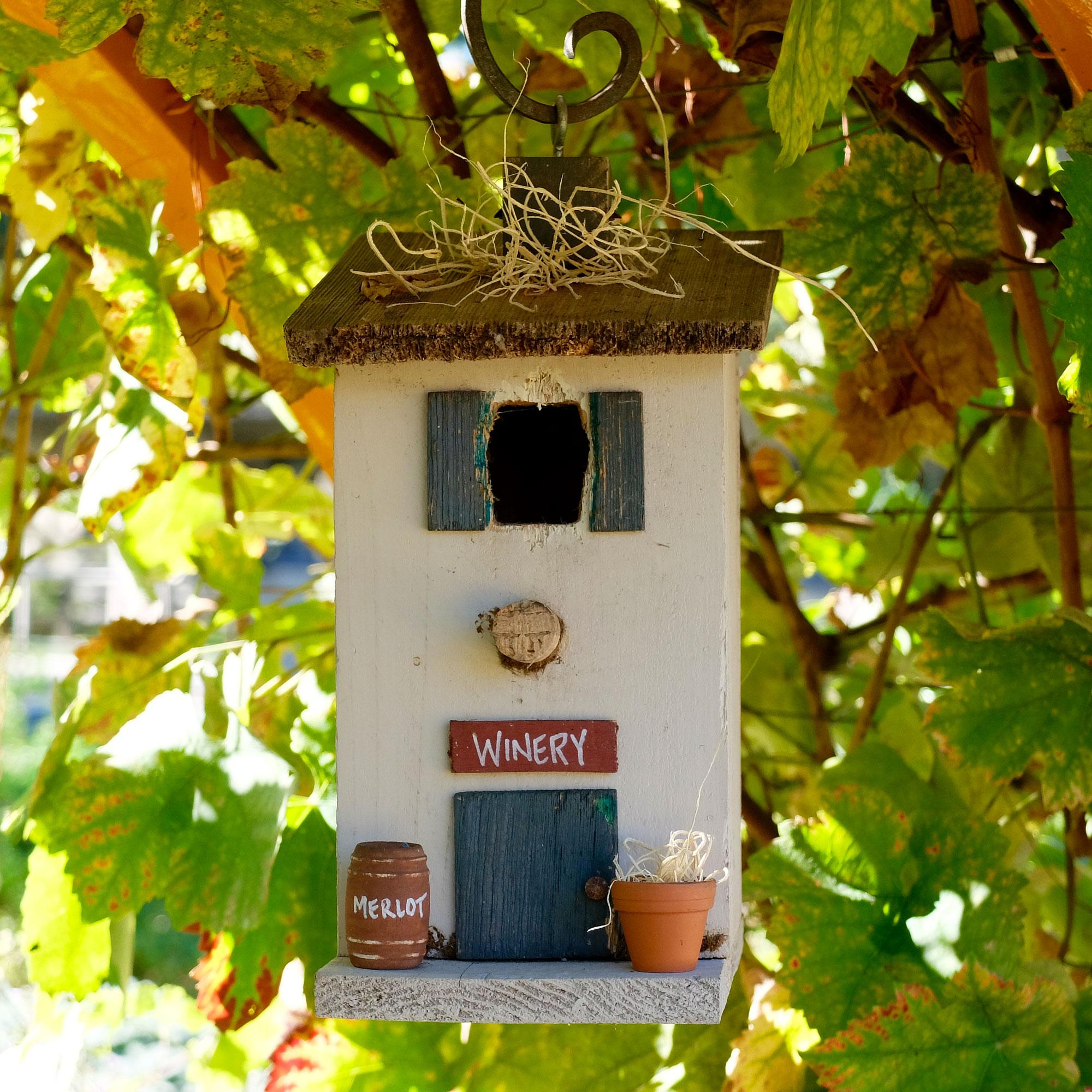 Inspired Ideas For Inviting Birds Into Your Garden