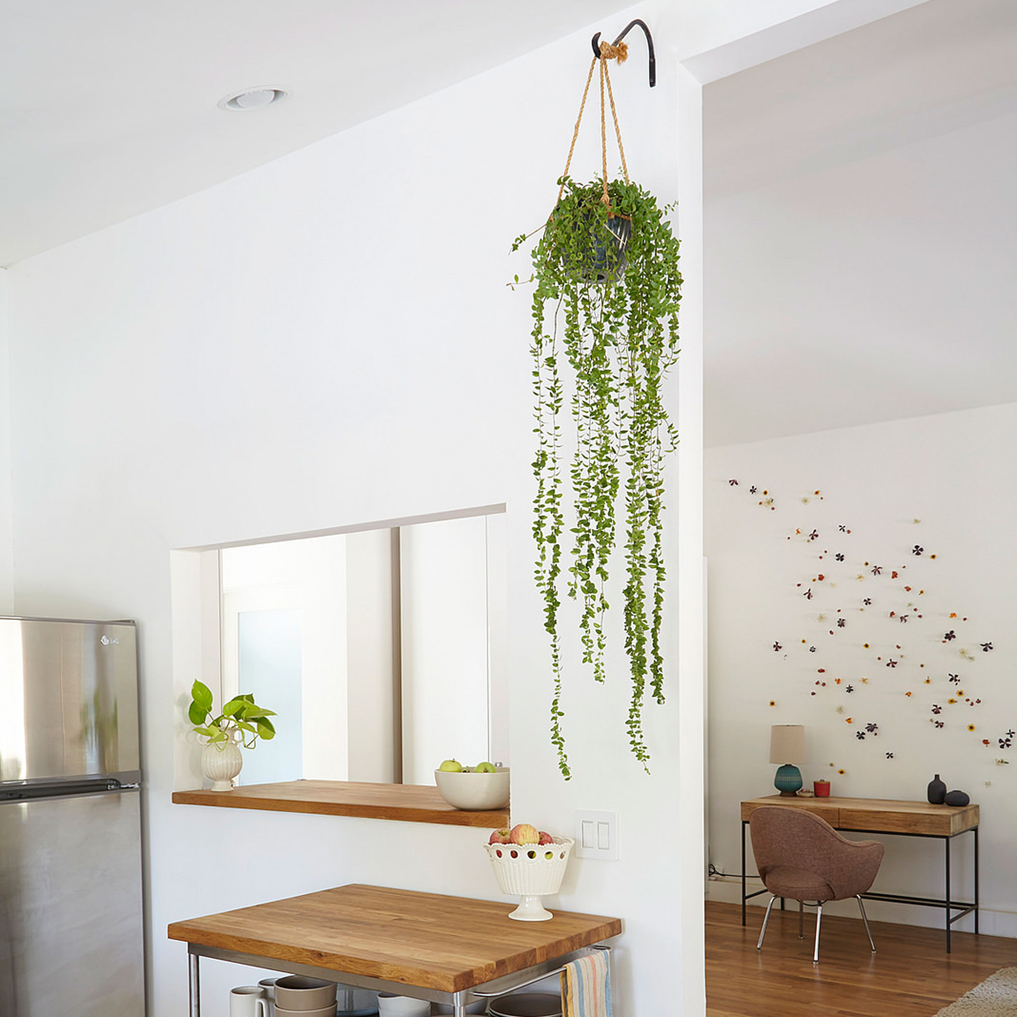 Pictures To Hang In Kitchen: Designing With Potted Plants