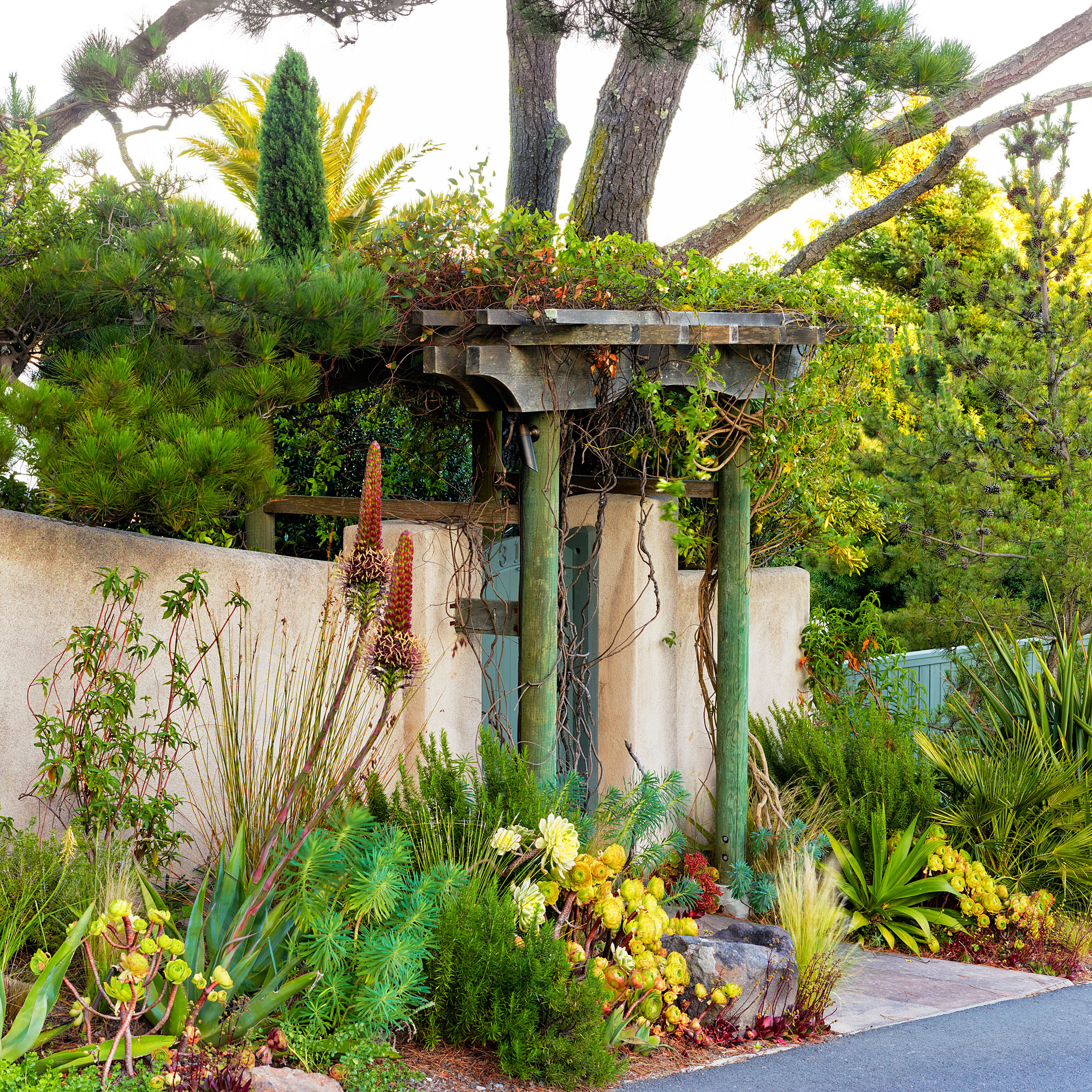 Mediterranean Style Home With Fantastic Curb Appeal: 6 Lessons For Mediterranean-Climate Gardening