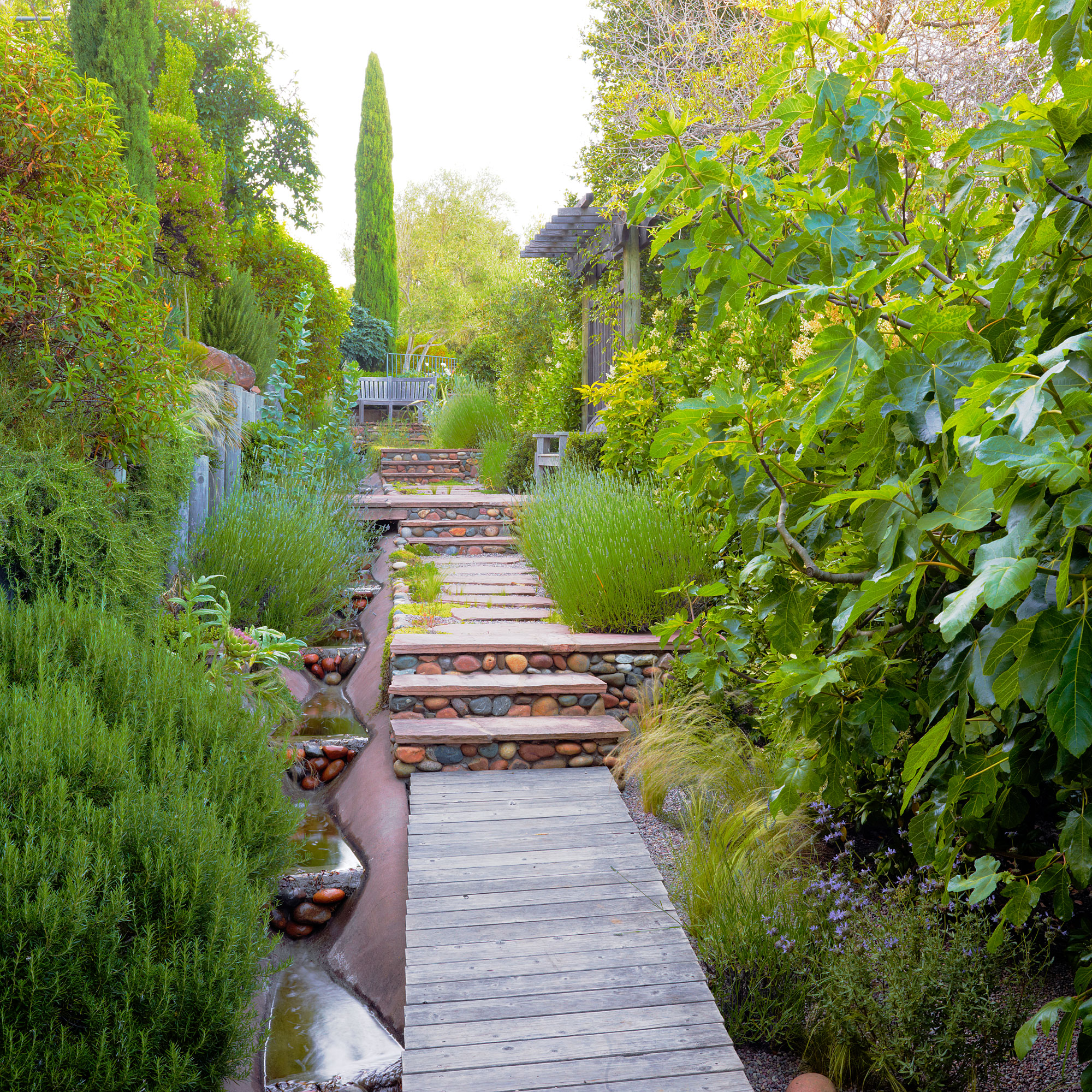 6 Lessons For Mediterranean-Climate Gardening