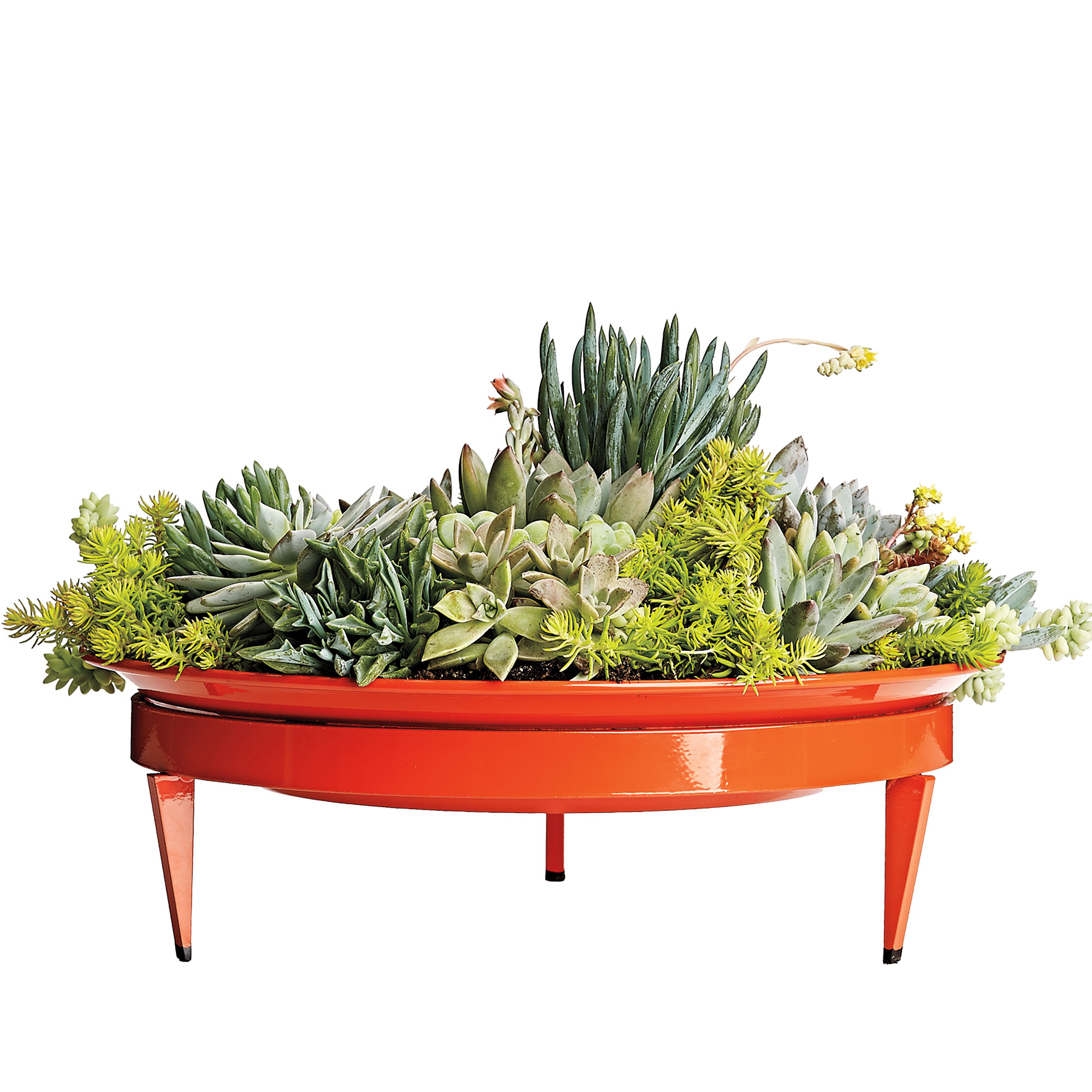 rectangle boxes inuse mayne product inch hayneedle window cfm box polyethylene planter fairfield