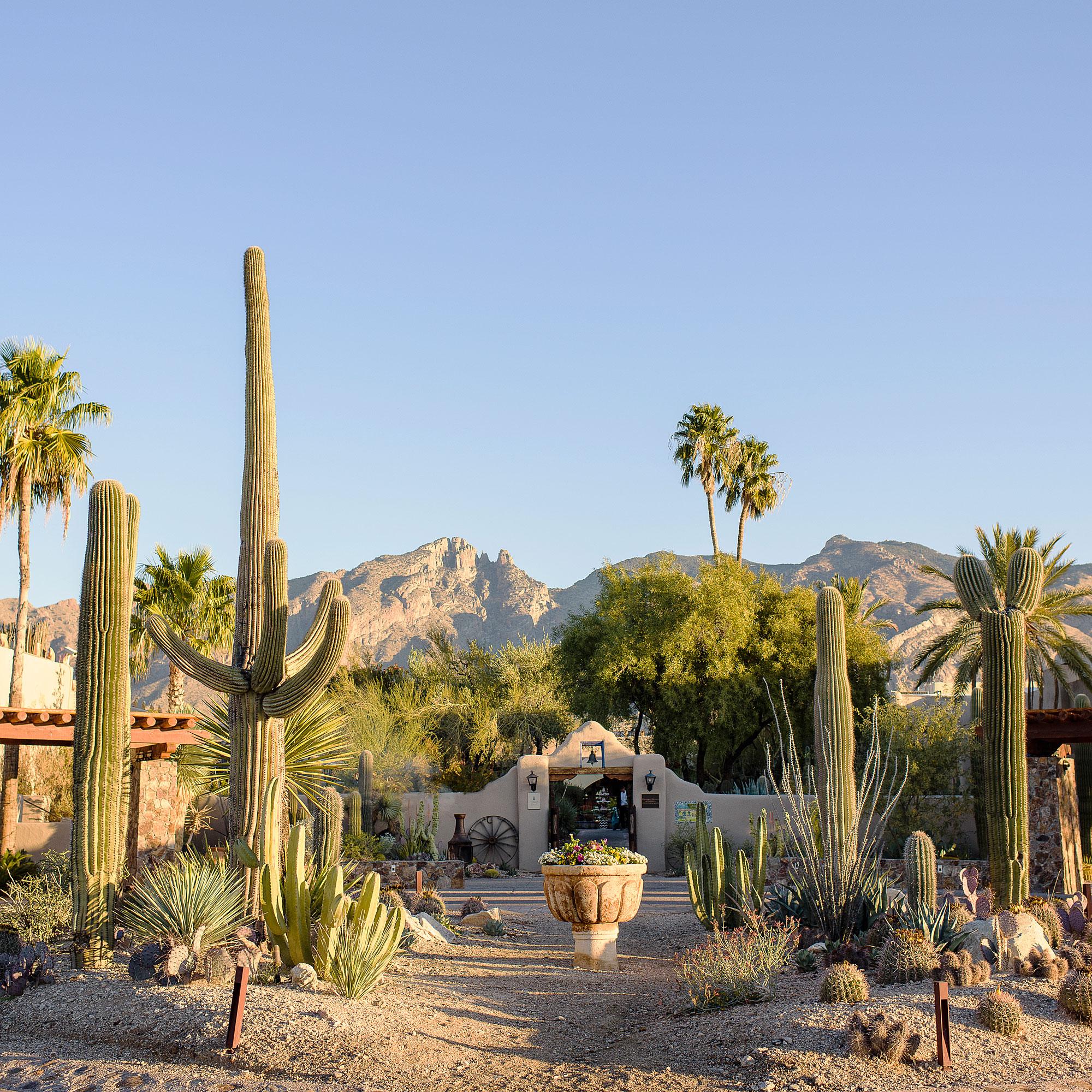 Best Arizona Wineries Sunset Magazine