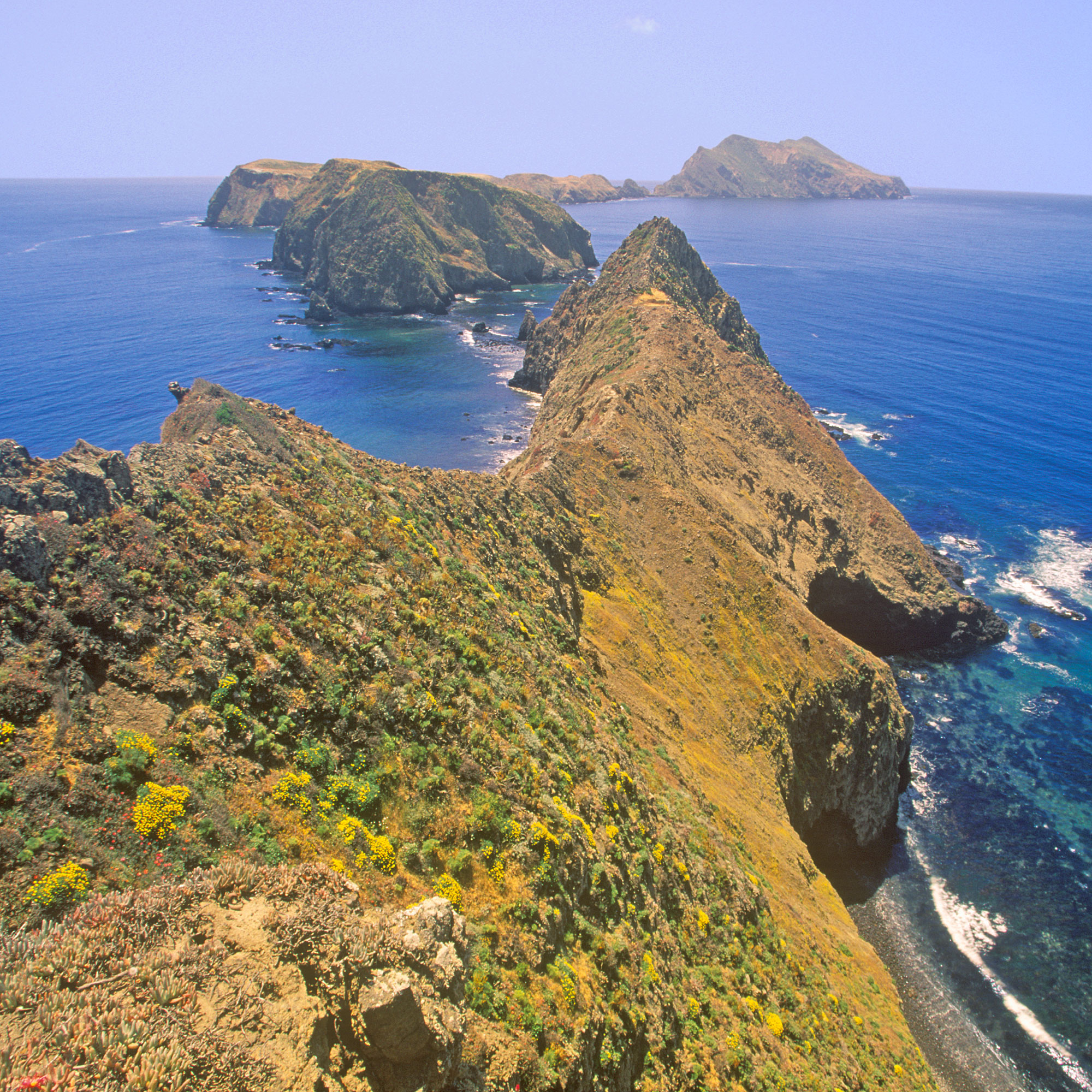 Channel Islands National Park Guide