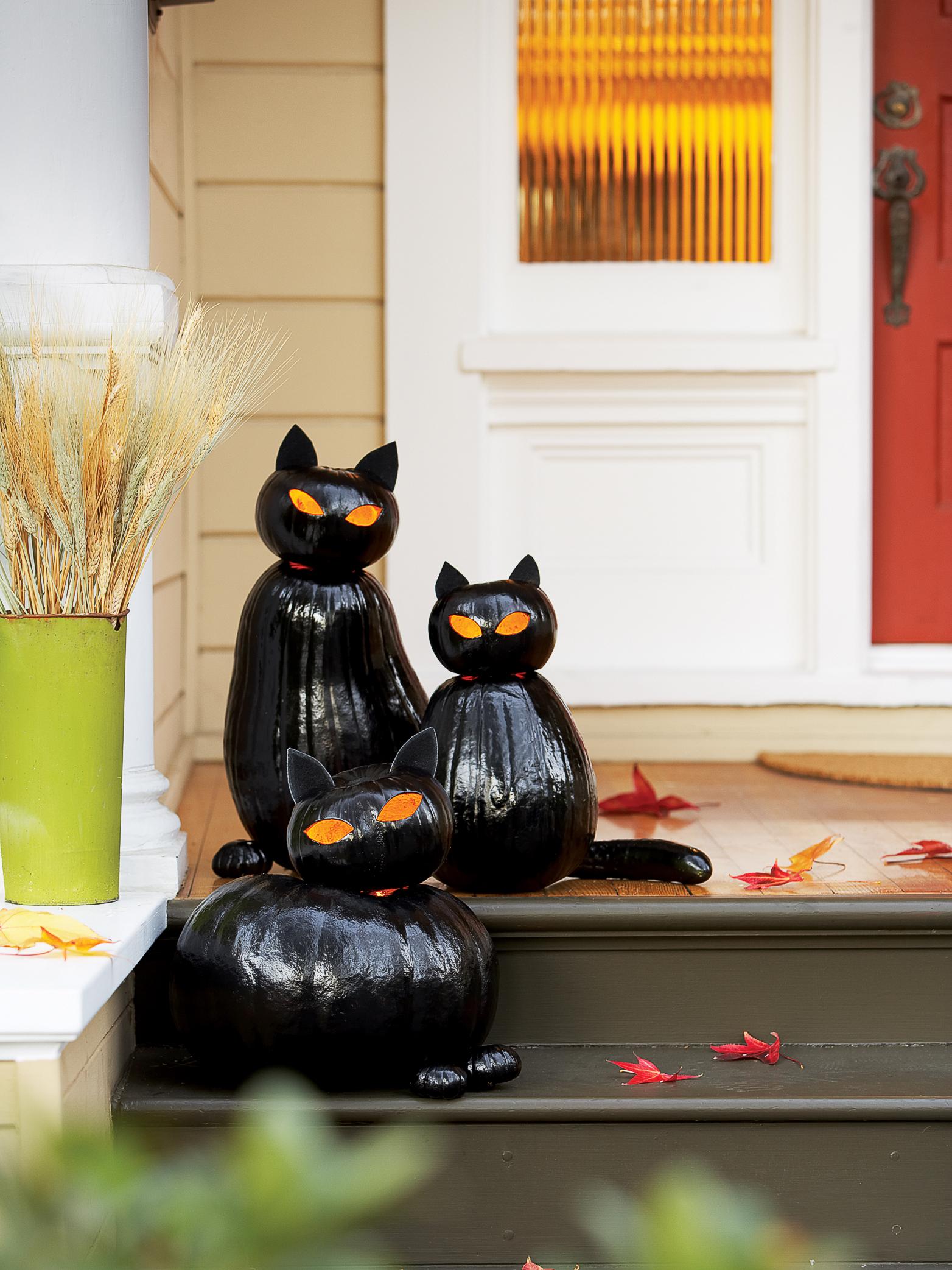 Make Black Cat Pumpkins Sunset Magazine