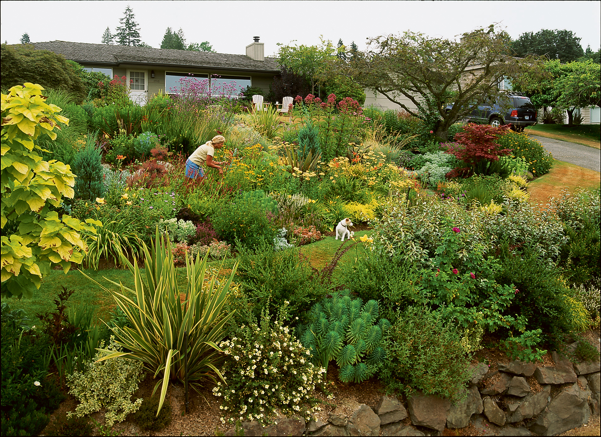 See how to ditch thirsty turf grass in favor of beautiful for Easy care front yard landscaping