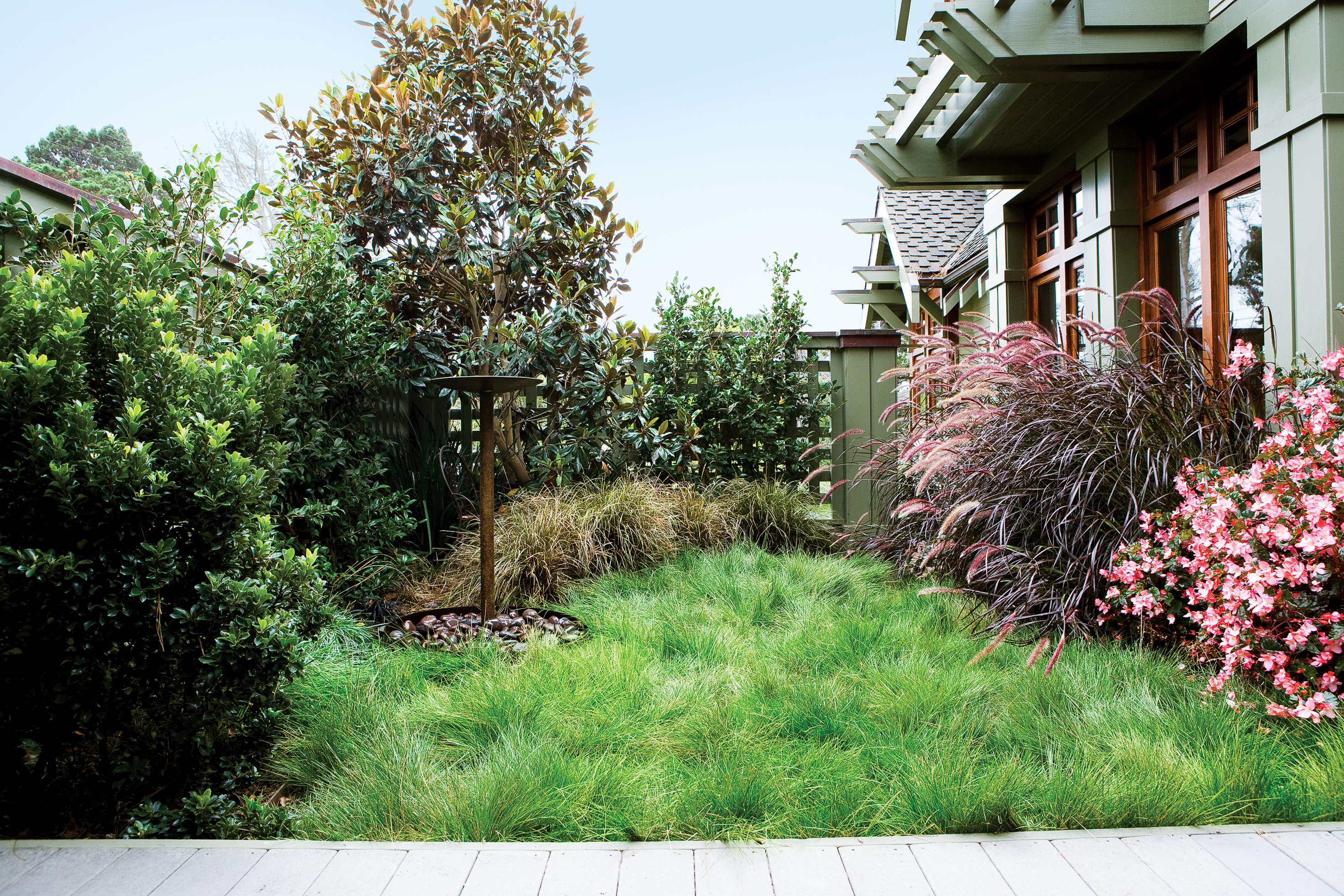 7 inspiring lawn free yards sunset magazine no mow grasses workwithnaturefo