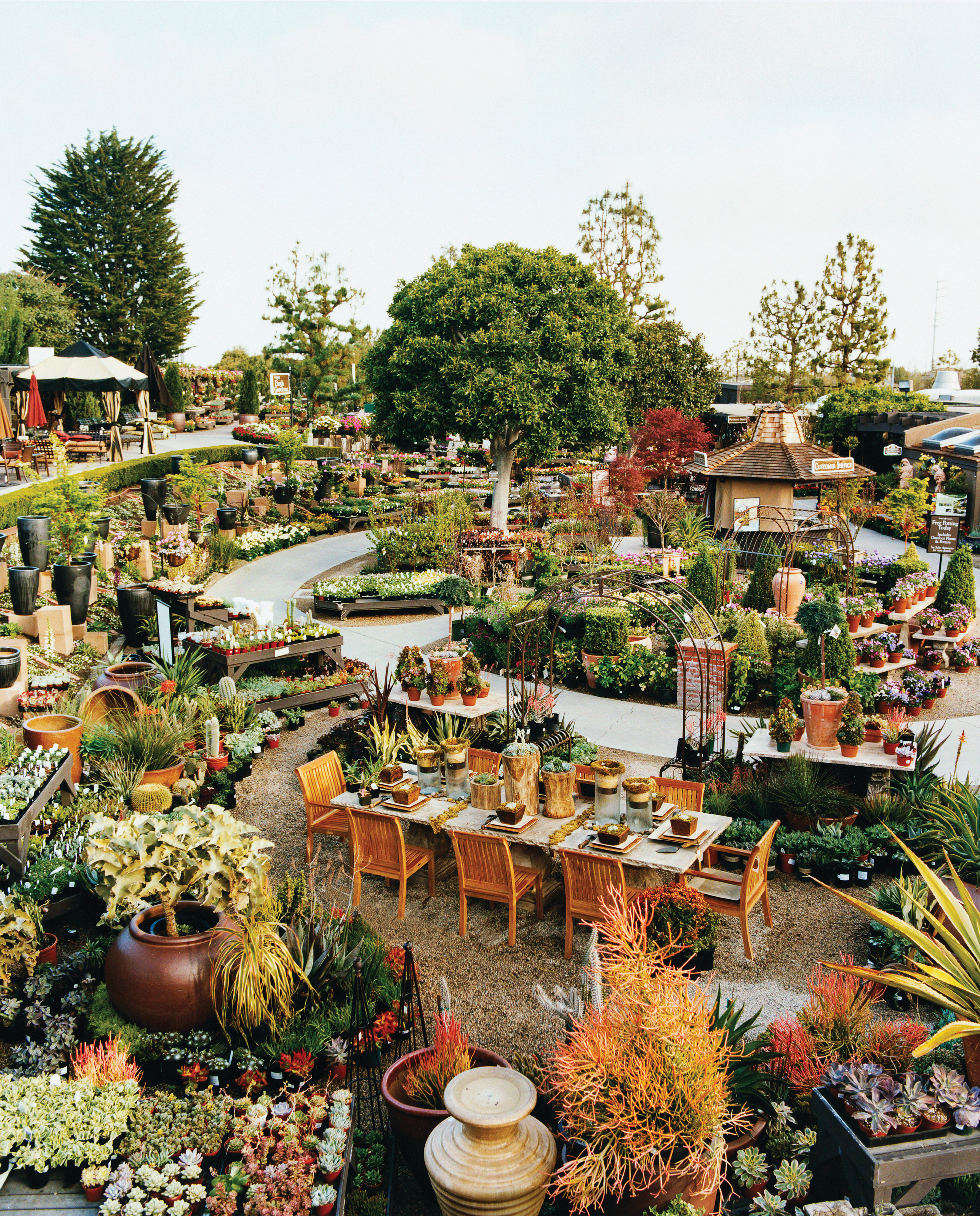 Roger\'s Gardens in Corona del Mar is a 7-acre dream for green thumbs ...