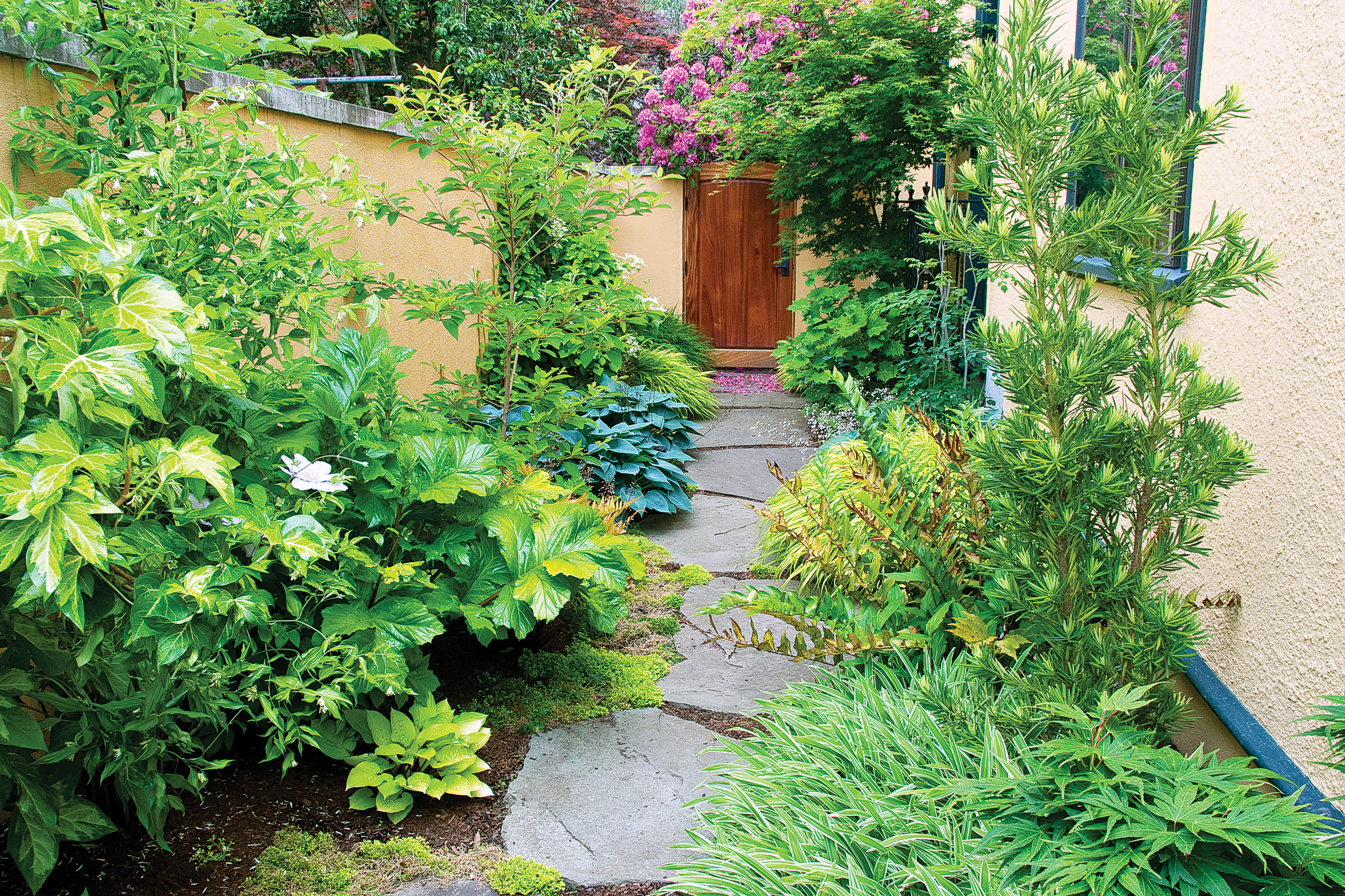 Side Yard Ideas - Sunset Magazine