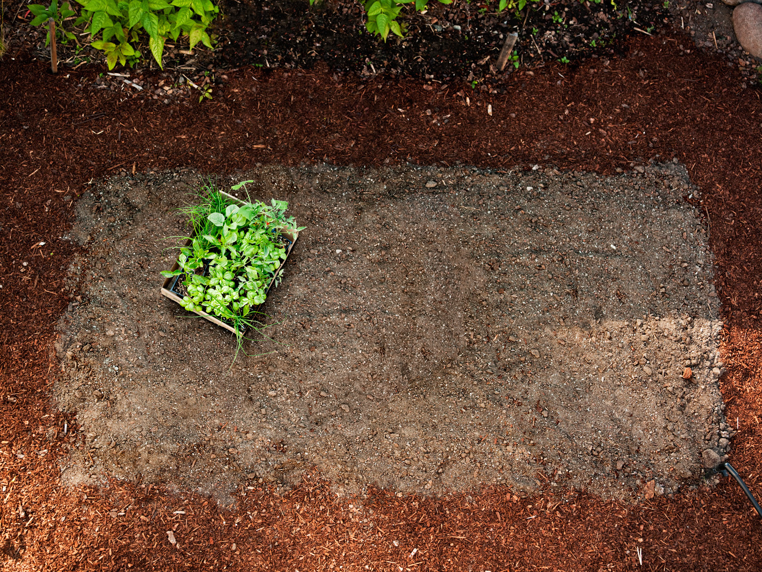 how to plant garden. plan and shop how to plant garden m