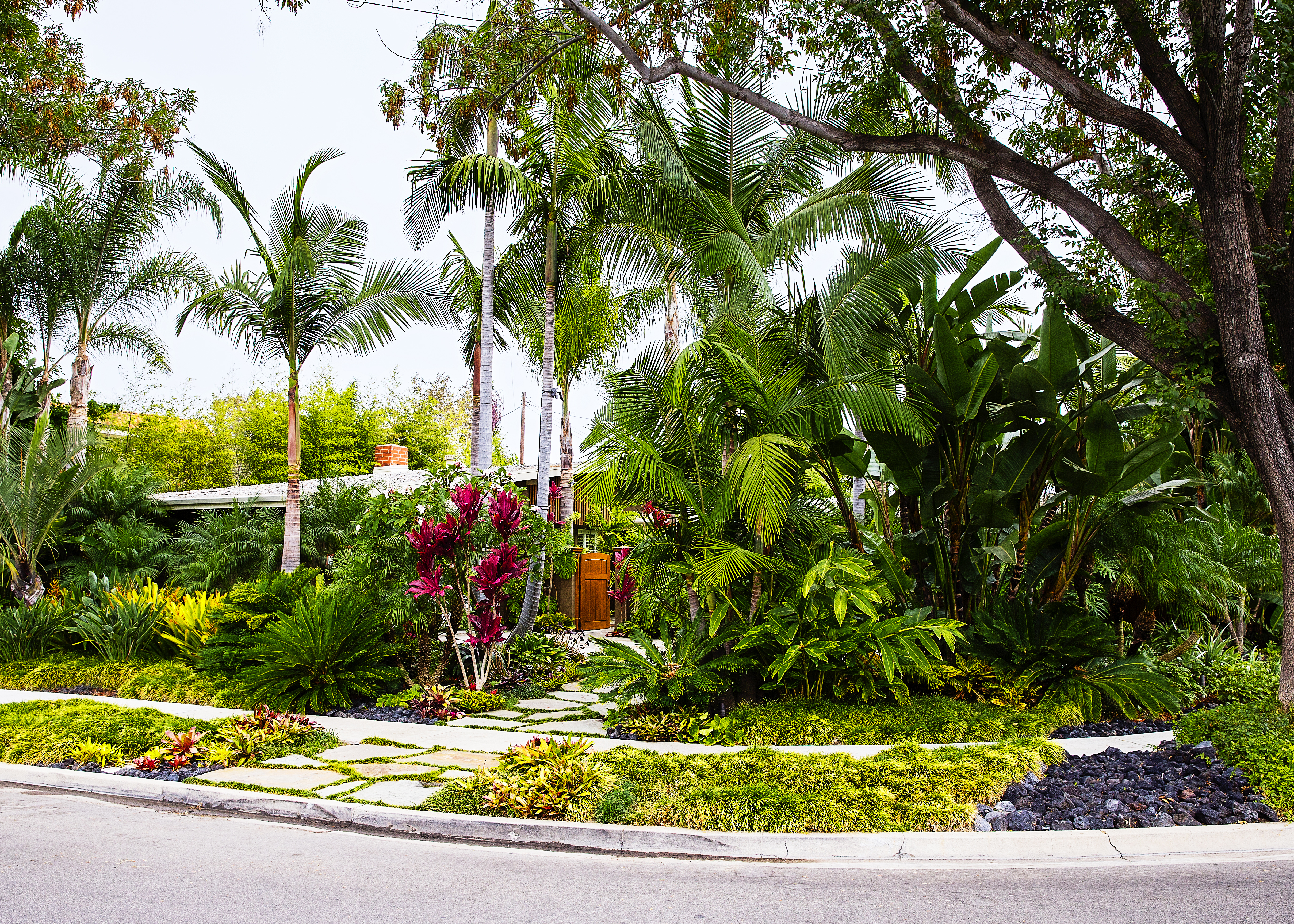How to Design a Lush Tropical Retreat - Sunset Magazine